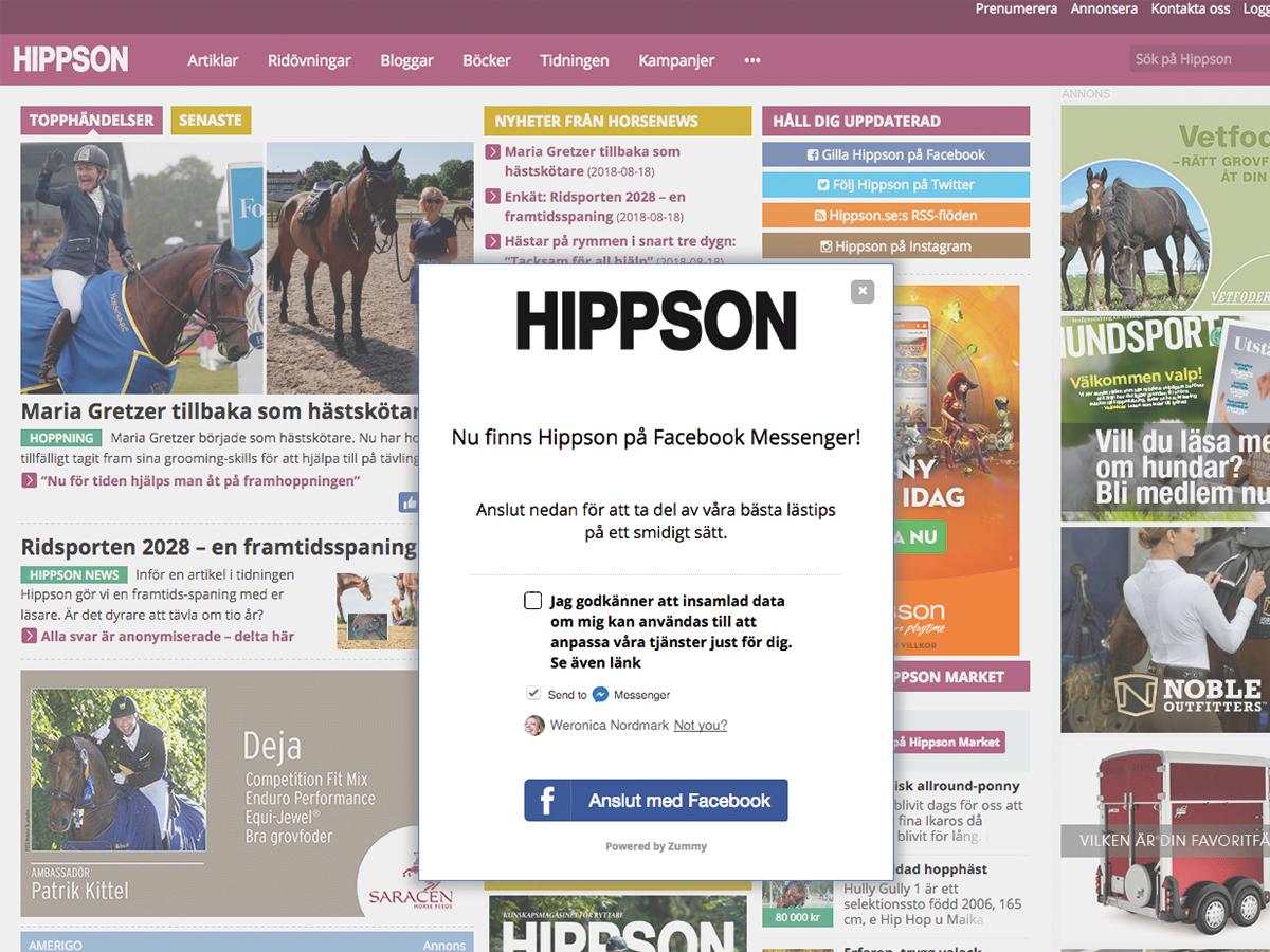 Hippson publisher remarketing chatbot
