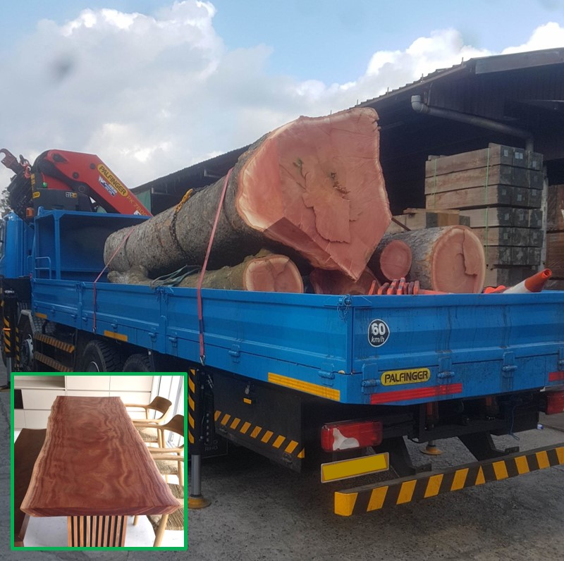 WORLD'S FINEST  (but not imported…local transport only):  AAA-grade African Mahogany  cut to widen the  Pan Island Expressway , now having a second life as our exquisite   Solid Slab Dining Tables