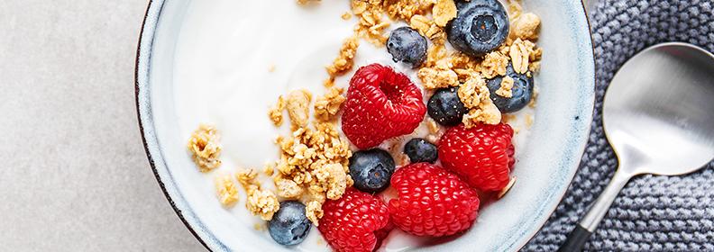 case-index-yogurt.png