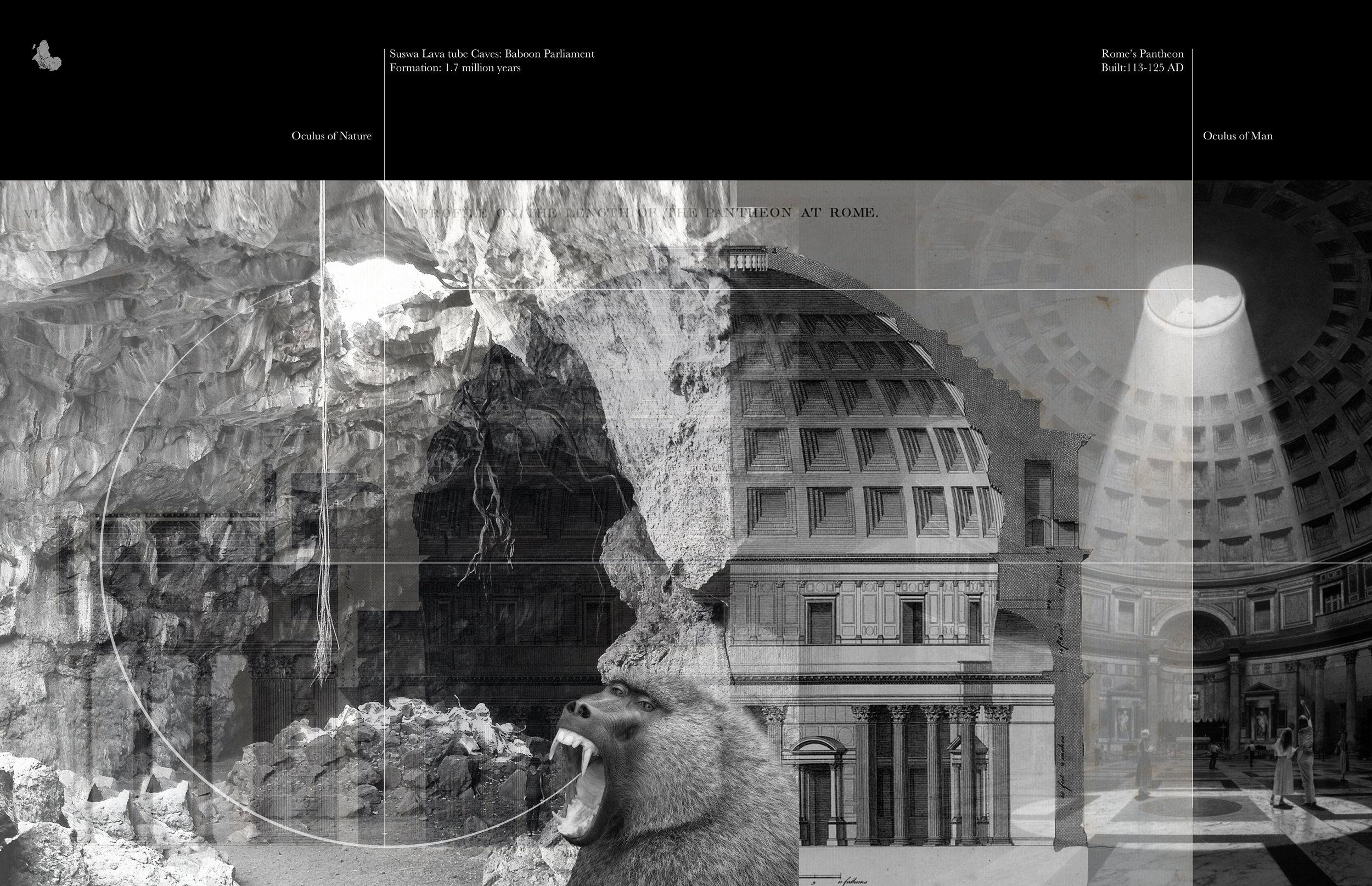 190501_Baboon Parliament Oculus.jpg