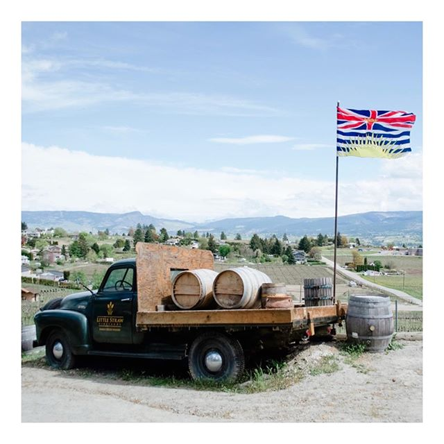 Little Straw Vineyards in West Kelowna is one of our favourite small lot wineries serving affordable wines. It's family owned and they just welcomed a new locally trained wine maker, Barb Hall.  Check out the Barrel Top Grill for excellent tapas!