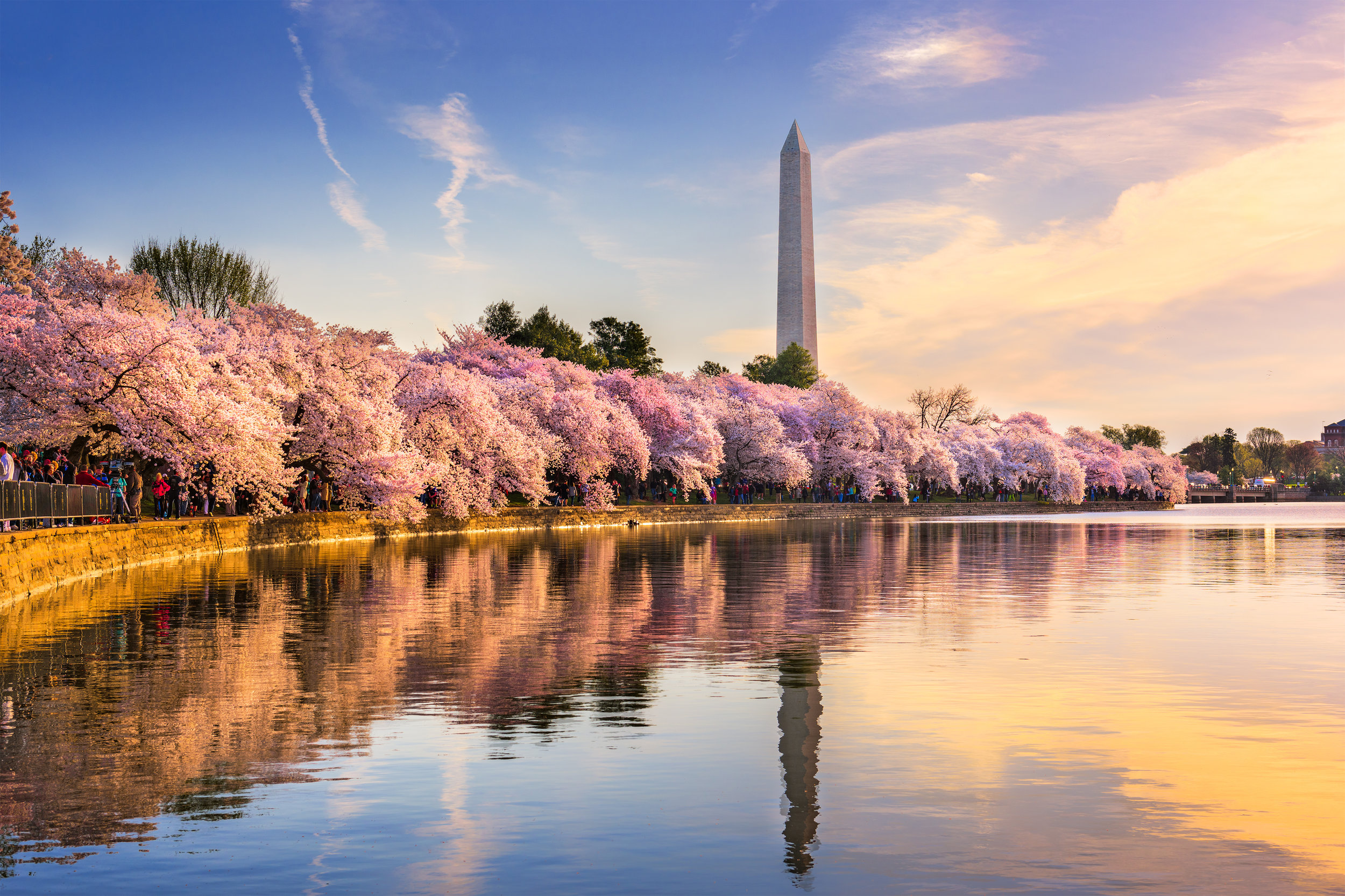 Washington DC USA at the tidal basin with Washington Monument in spring season.jpg