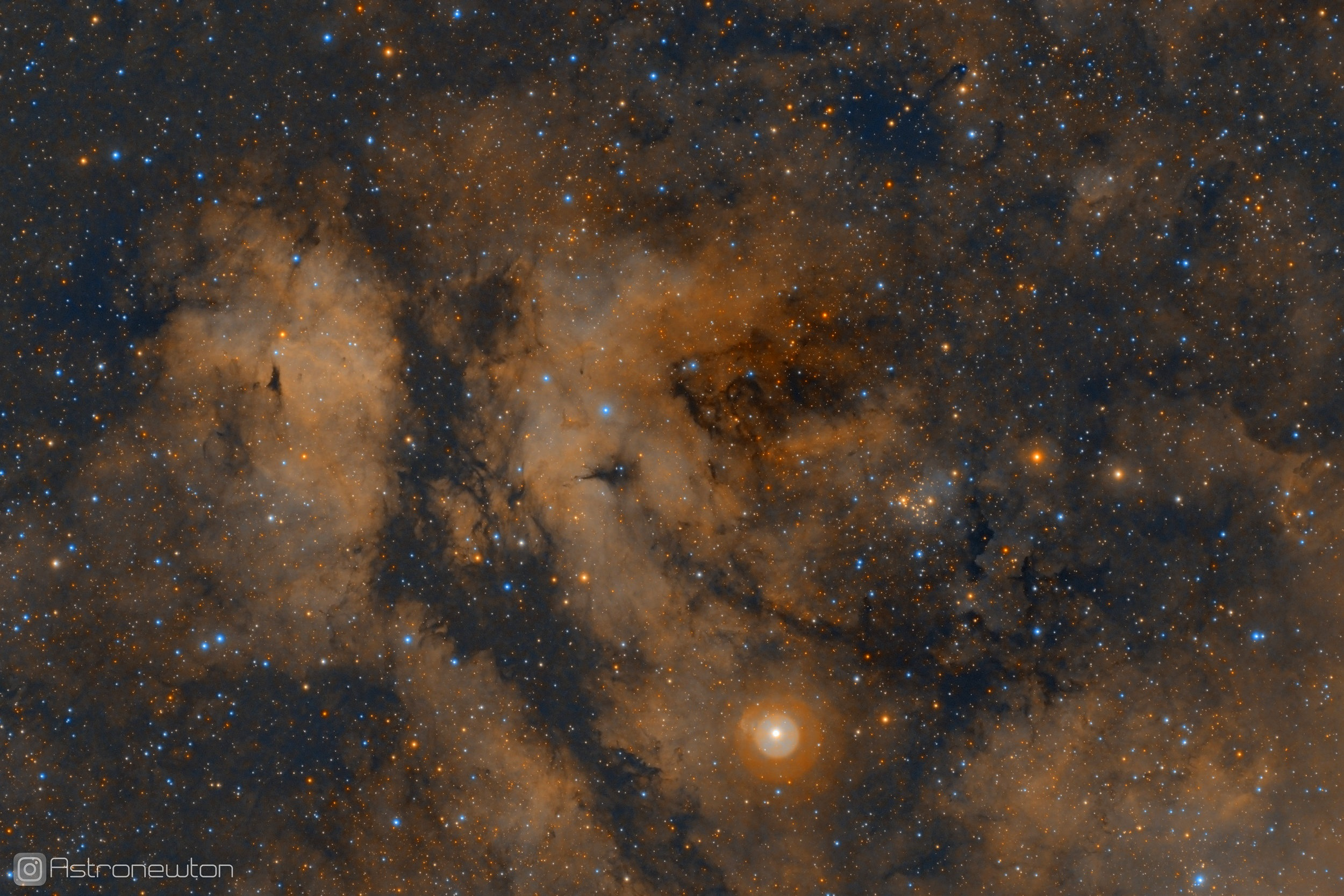 The Sadr Region (IC 1318) in SHO False Color. 4 hours total exposure