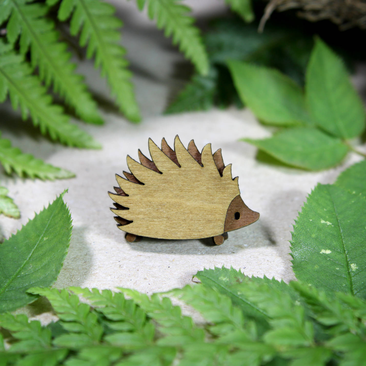 Hedgehog leaves.jpg