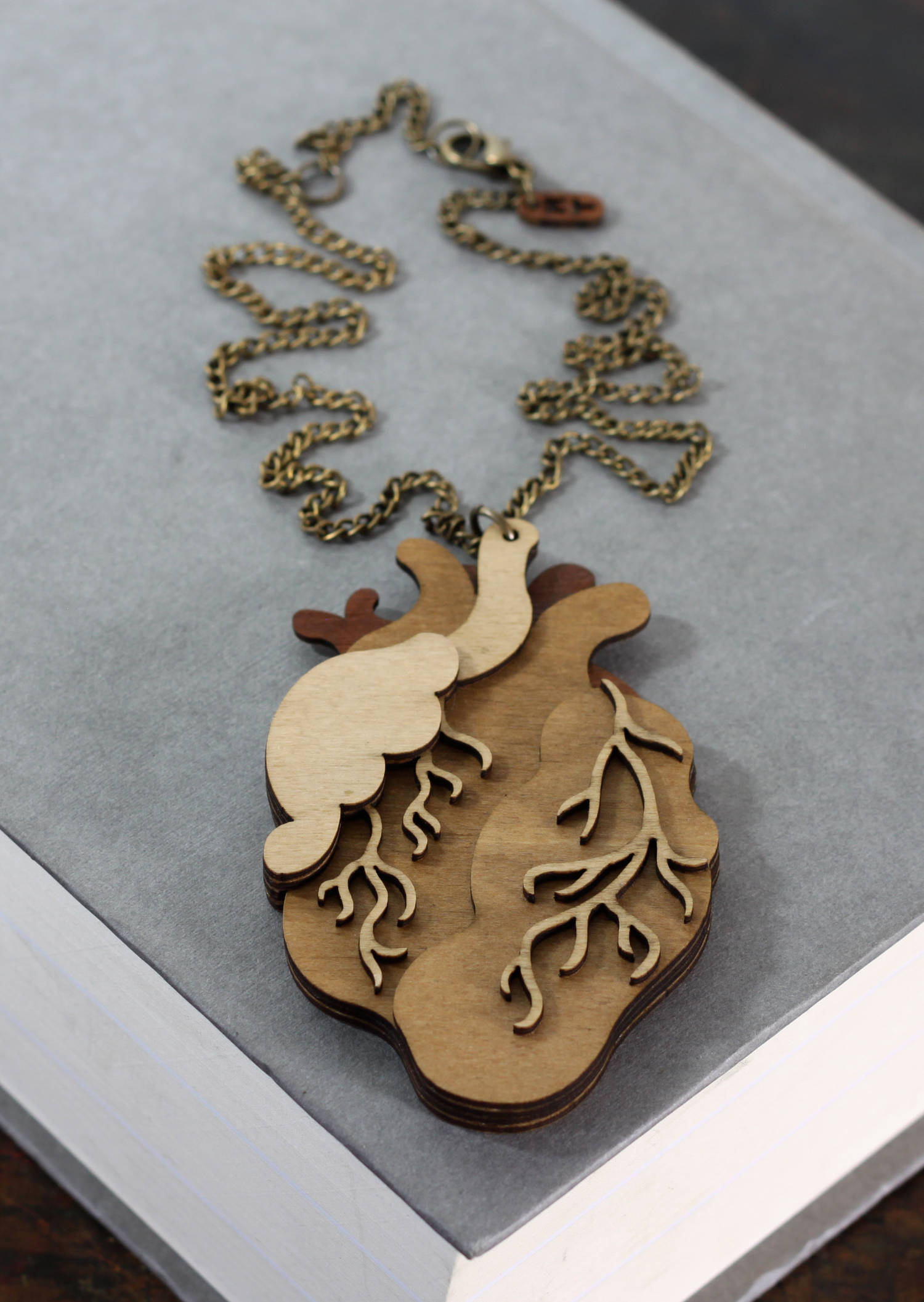 Heart Necklace Front Book.jpg
