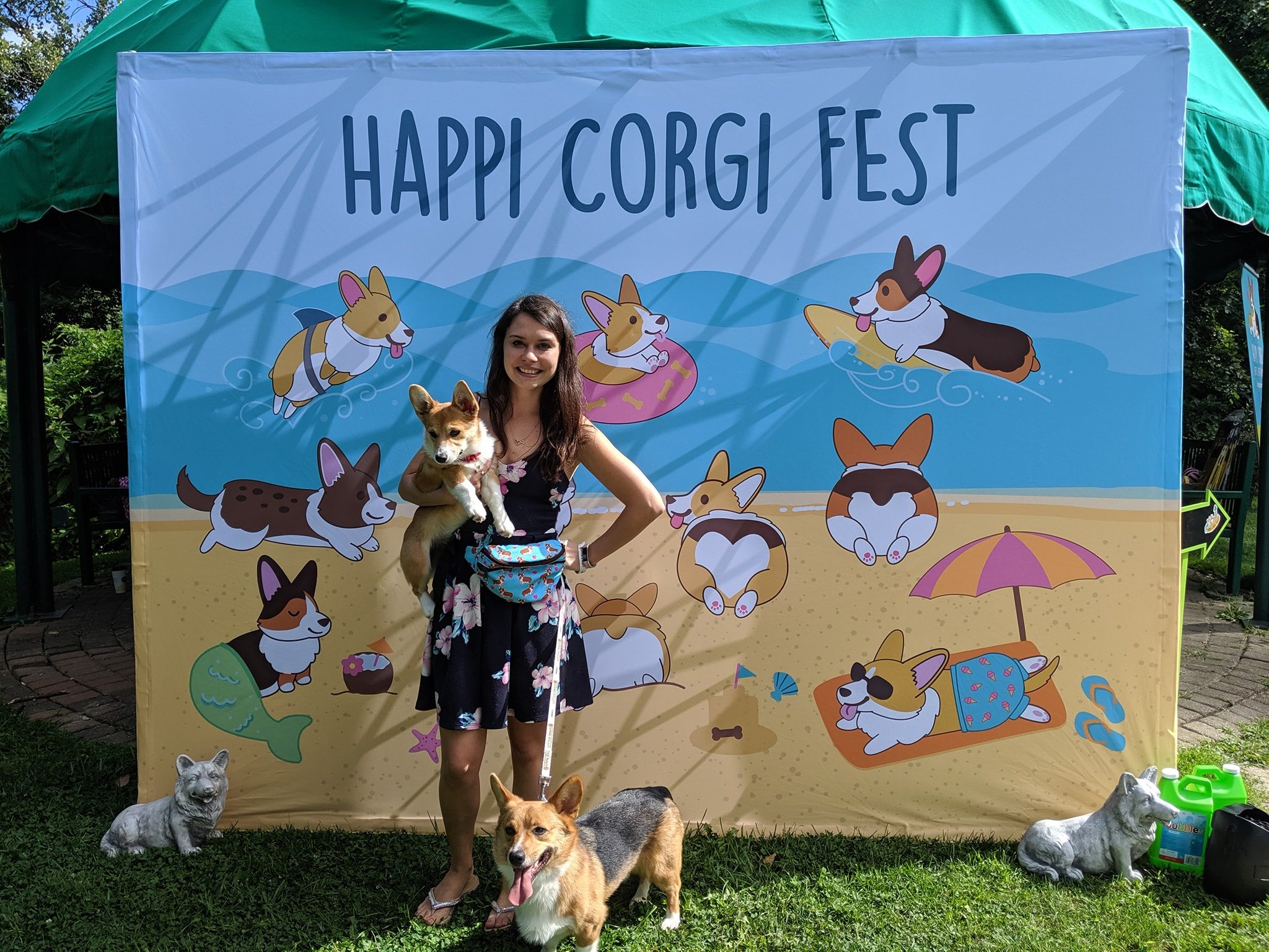 Jade, Fynn, and Eevee at the 2019 Corgi Fest in Erie, PA.