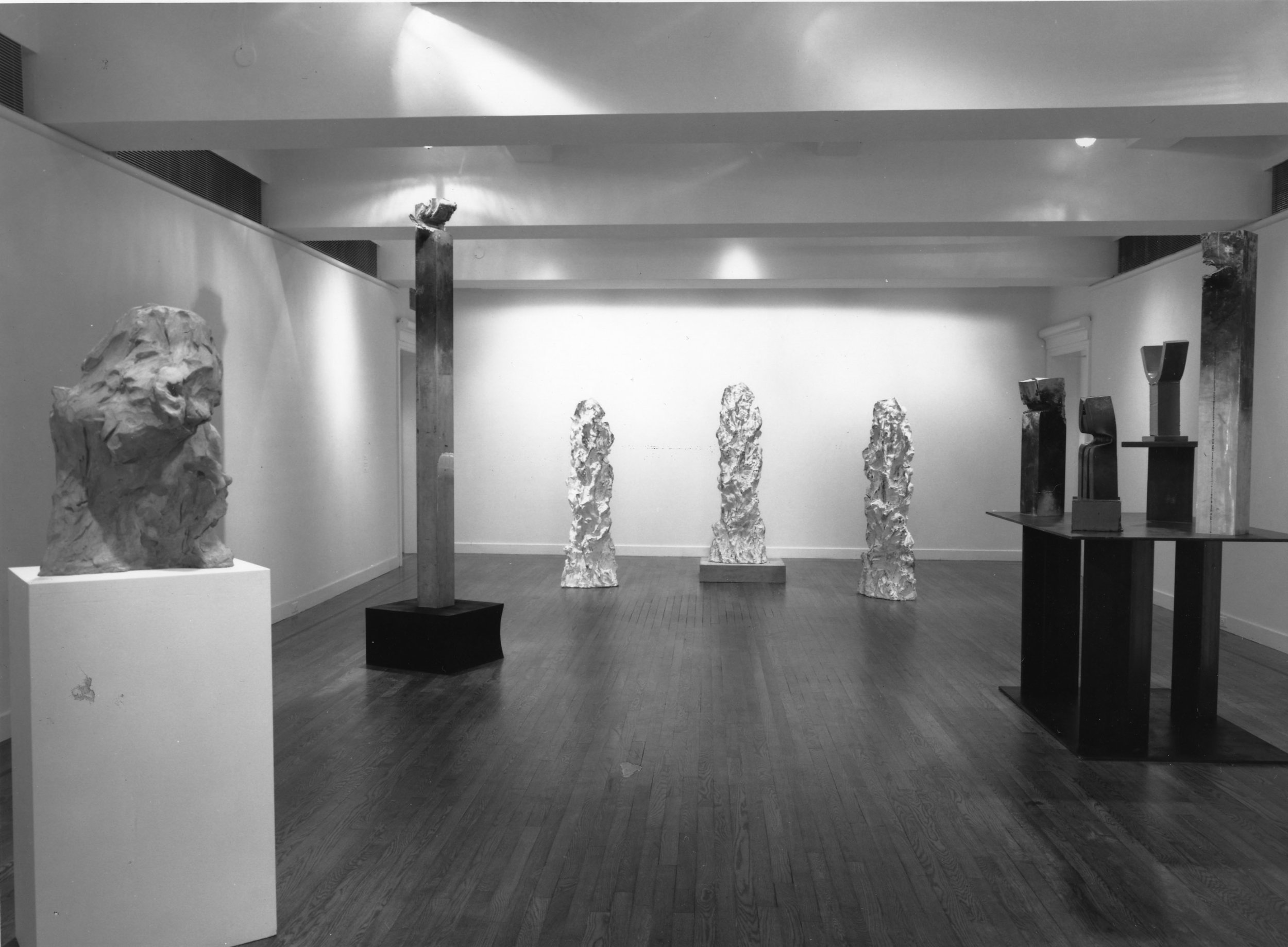 1990_AK_Expo Holly Solomon Gallery_NY_1.jpg