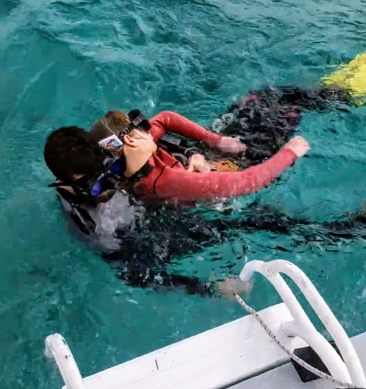 RescueDiver.PNG