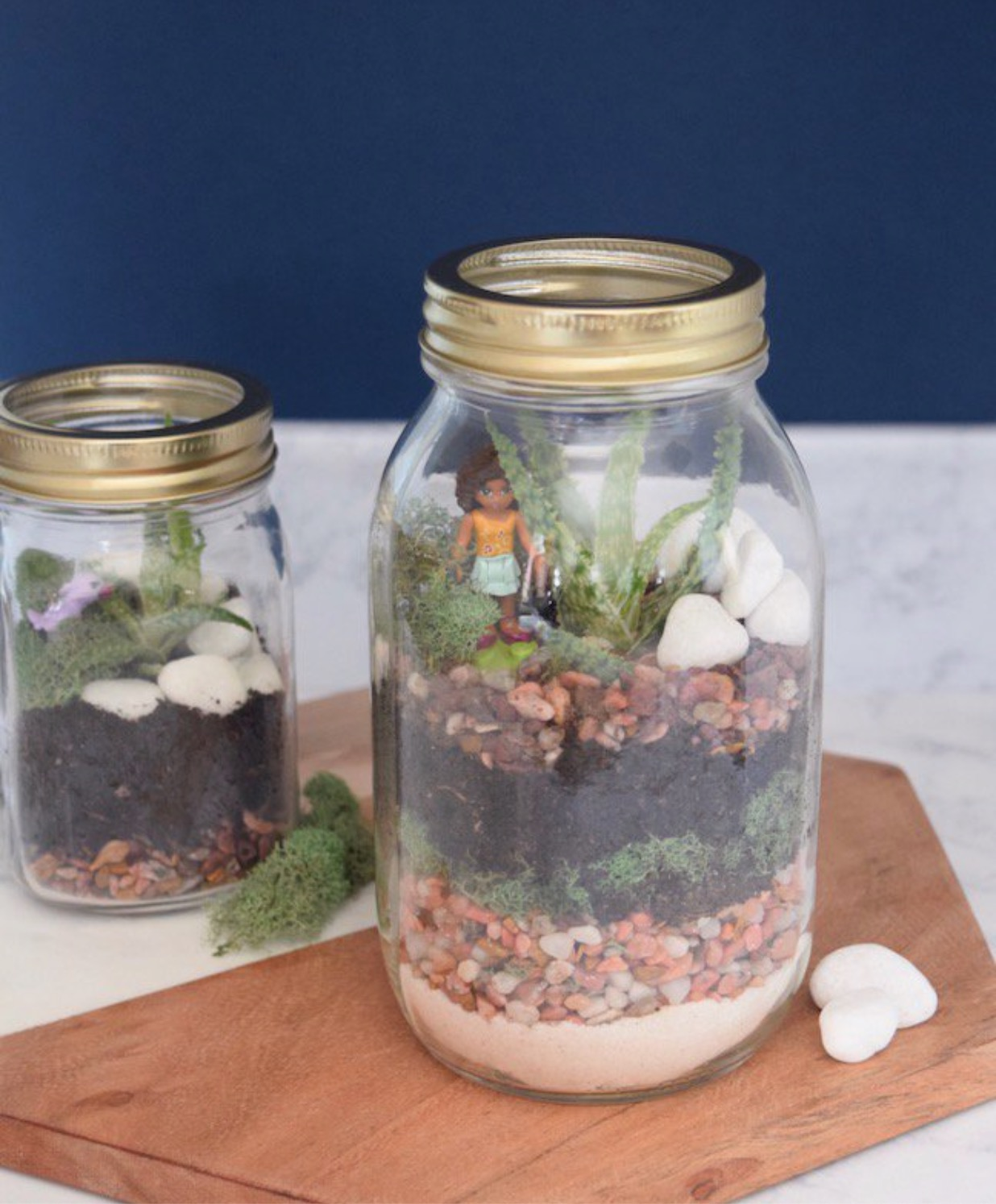 This DIY Mason Jar Terrarium is So Easy to Make. - EXCERPT: It still feels a lot like winter in Minnesota. It's 20 degrees, and my feet are perpetually freezing. While I pop my vitamin D tablets and daydream about lazy days on the lake this summer, I'm getting desperate to see some actual greenery… READ THE POST