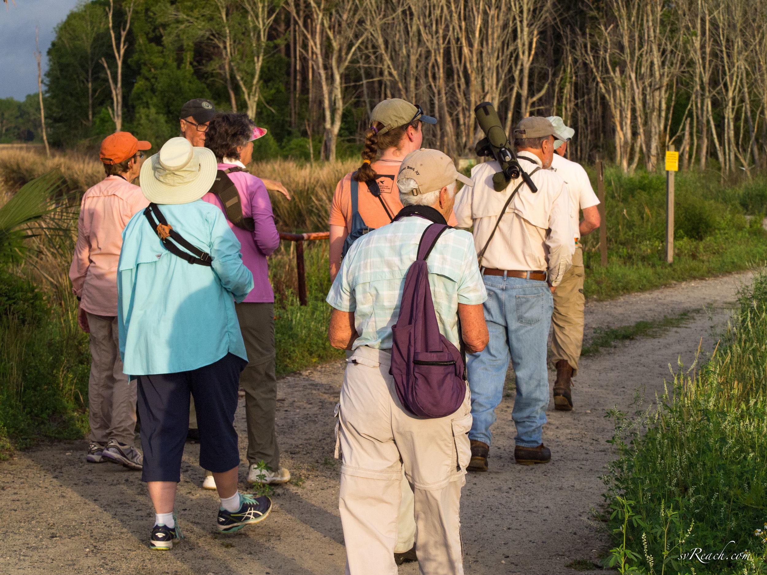 Coastal Georgia Audubon field trip