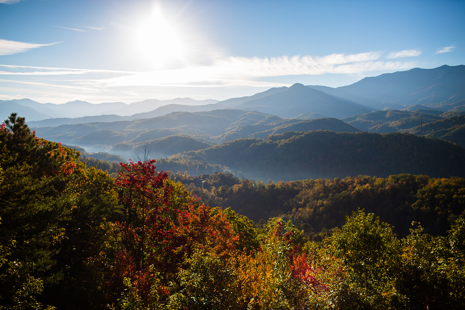 Smoky-Mountain-Photographers-JoPhoto-3.jpg
