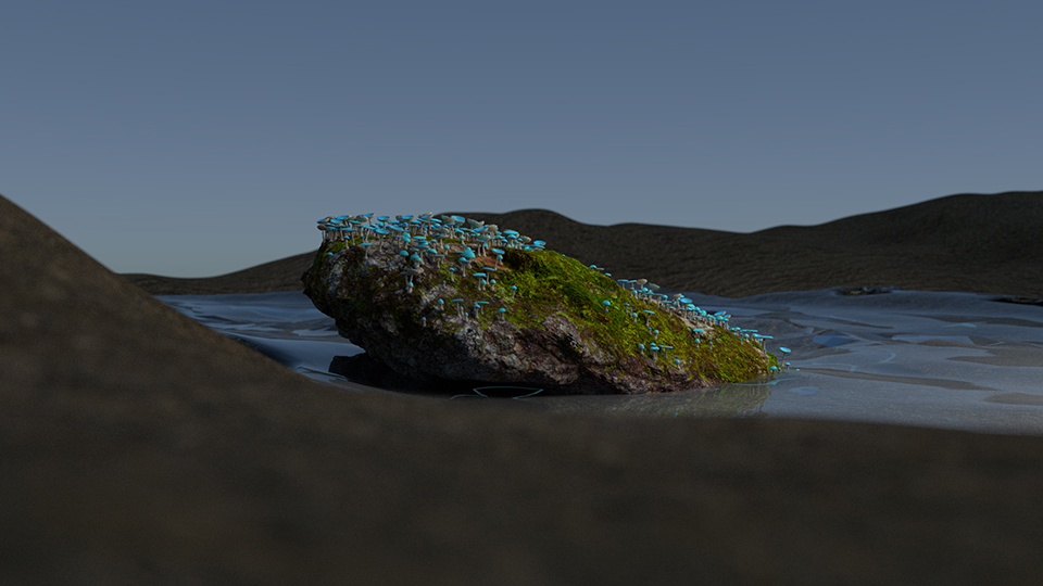 Rock & Mushrooms from Quixel's Bridge exported into Houdini and rendered with Blender's Cycles