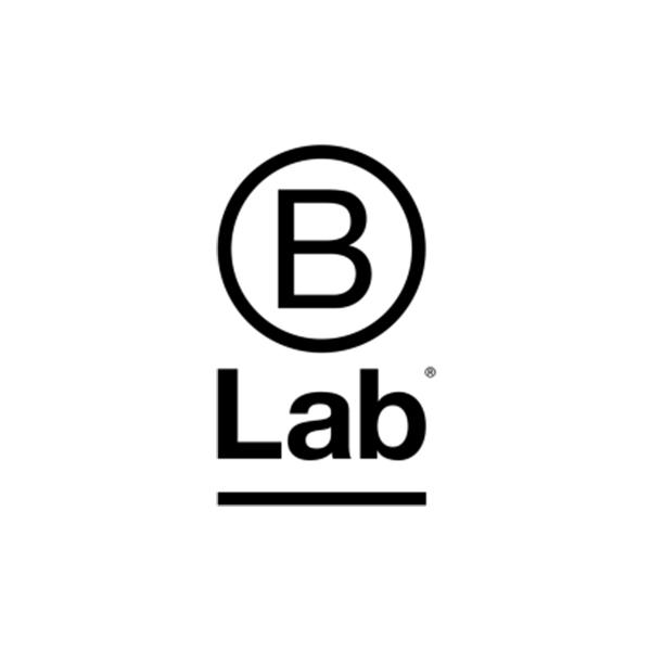 logos_0011_B-Lab_logo_vertical_1.jpg