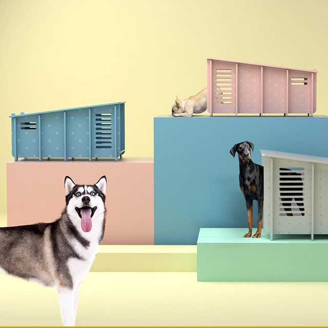One year ago today I adopted my dog, Momo. She comes with me everywhere and has served as my biggest inspiration in getting our new affordable designer dog houses out to the world. ⠀⠀ #barkitecture #pastel #design #interiordesign #interior #dogsofinstagram #dogs #instadog #dogstagram #ilovemydog #dogoftheday #doglover #frenchbulldog #frenchbulldogsofinstagram #husky #doberman