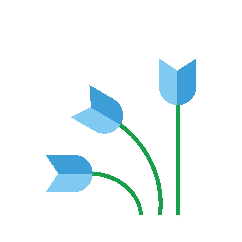 STTF Logo.png
