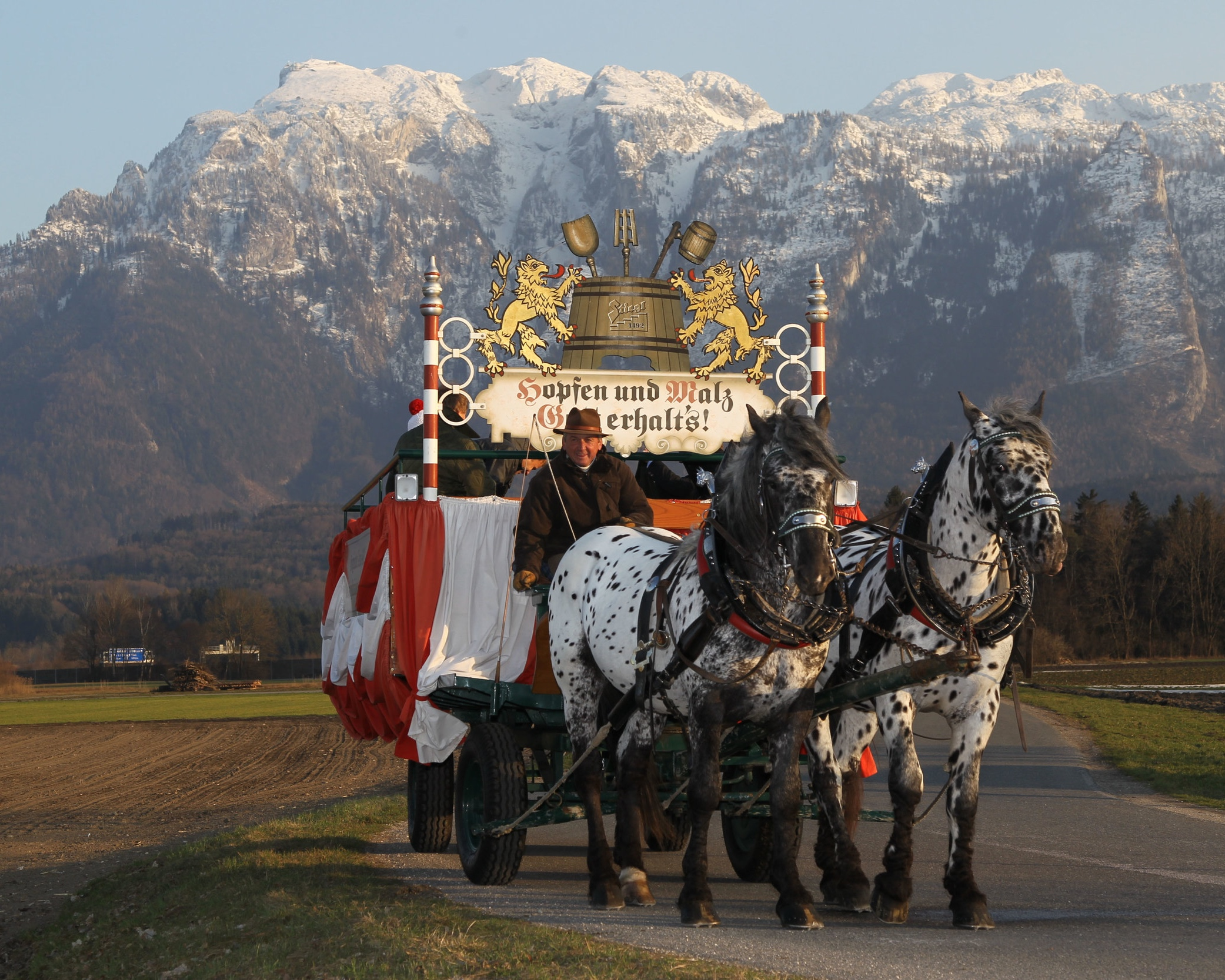Traditional beer delivery in Salzburg, with a horse drawn carriage