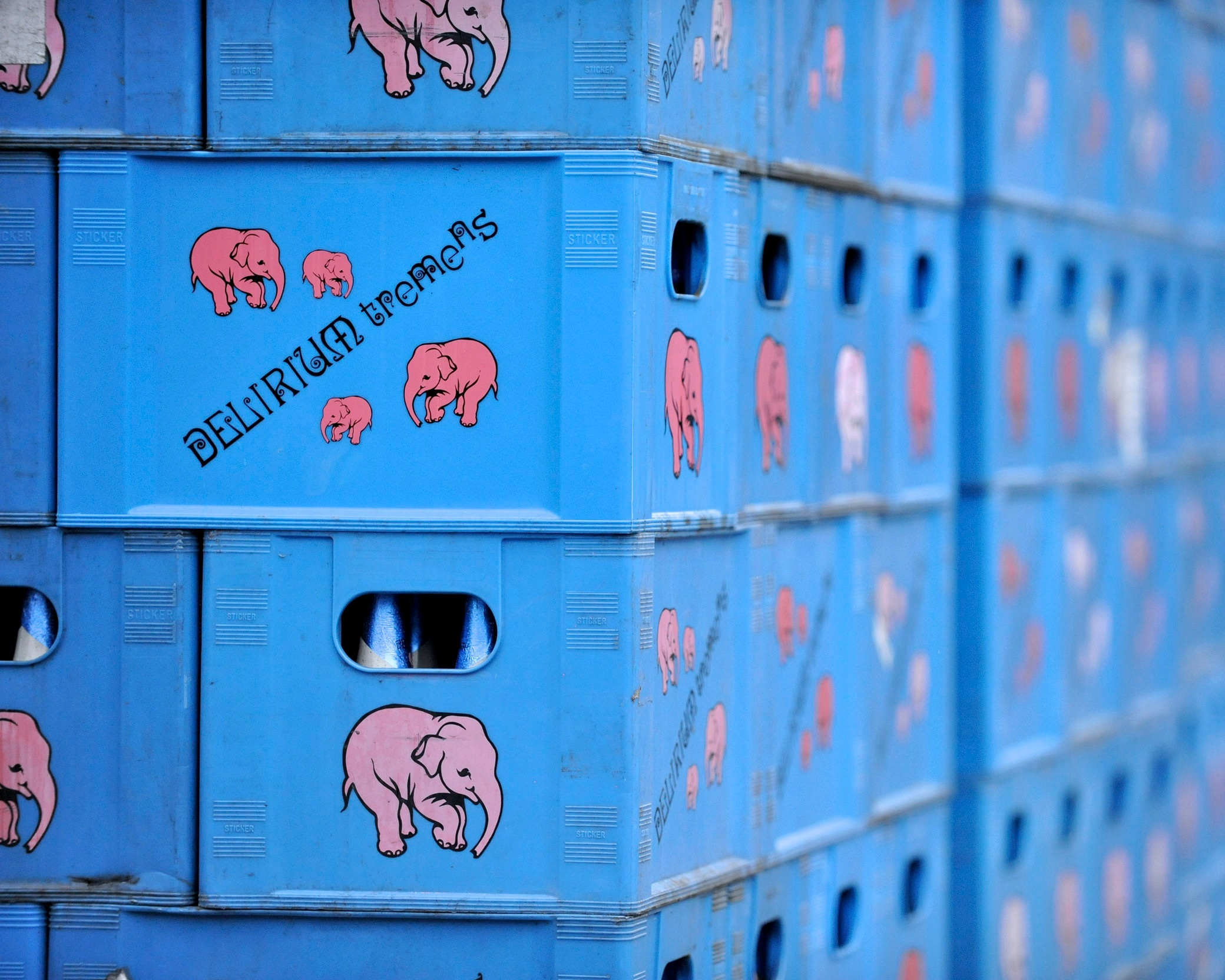 Shipment of Delirium tremens in iconic blue beer crates