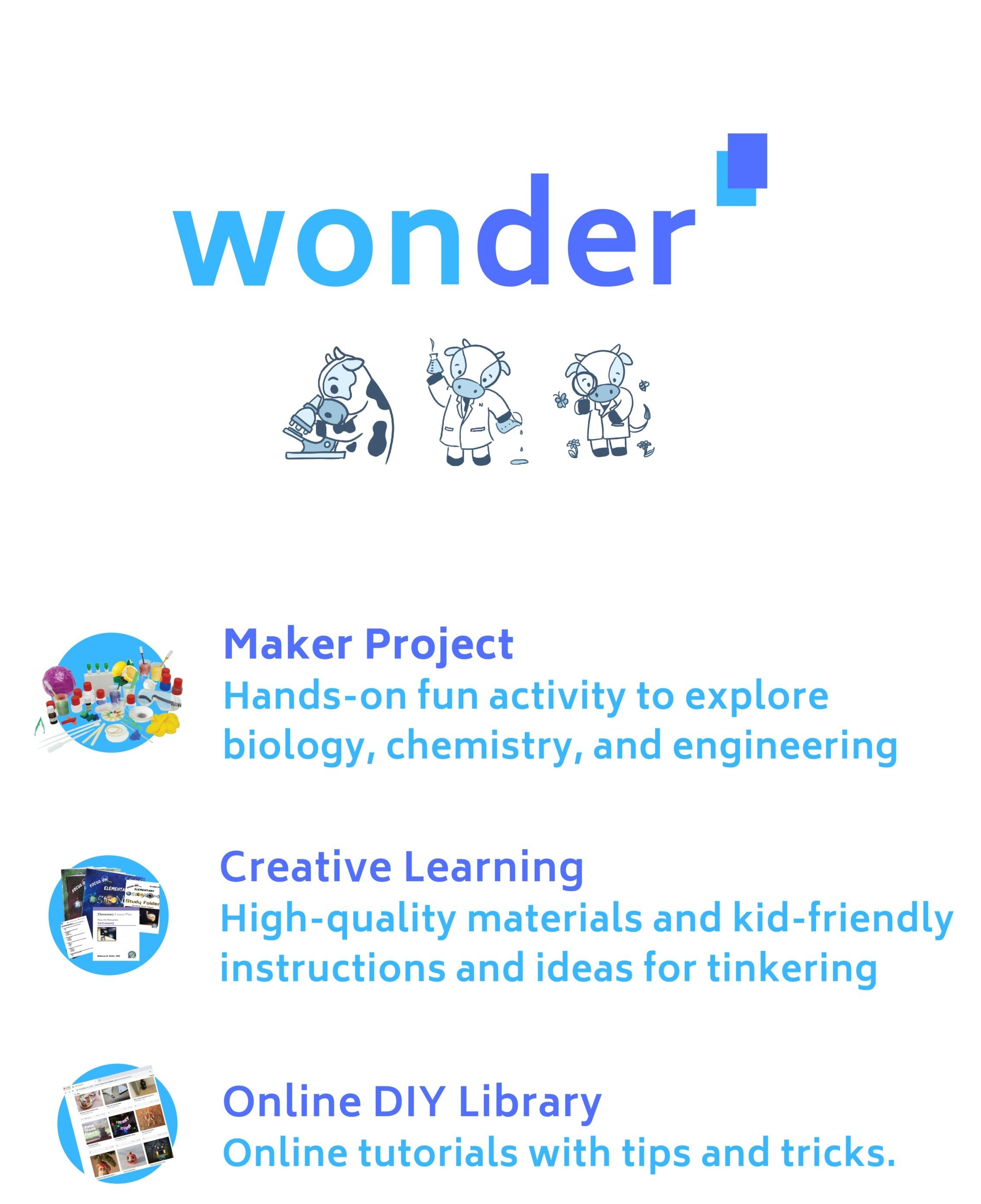 wonder-1.png