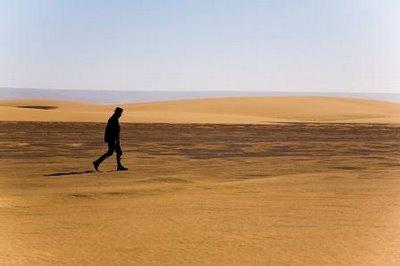 lost-in-the-desert.jpg
