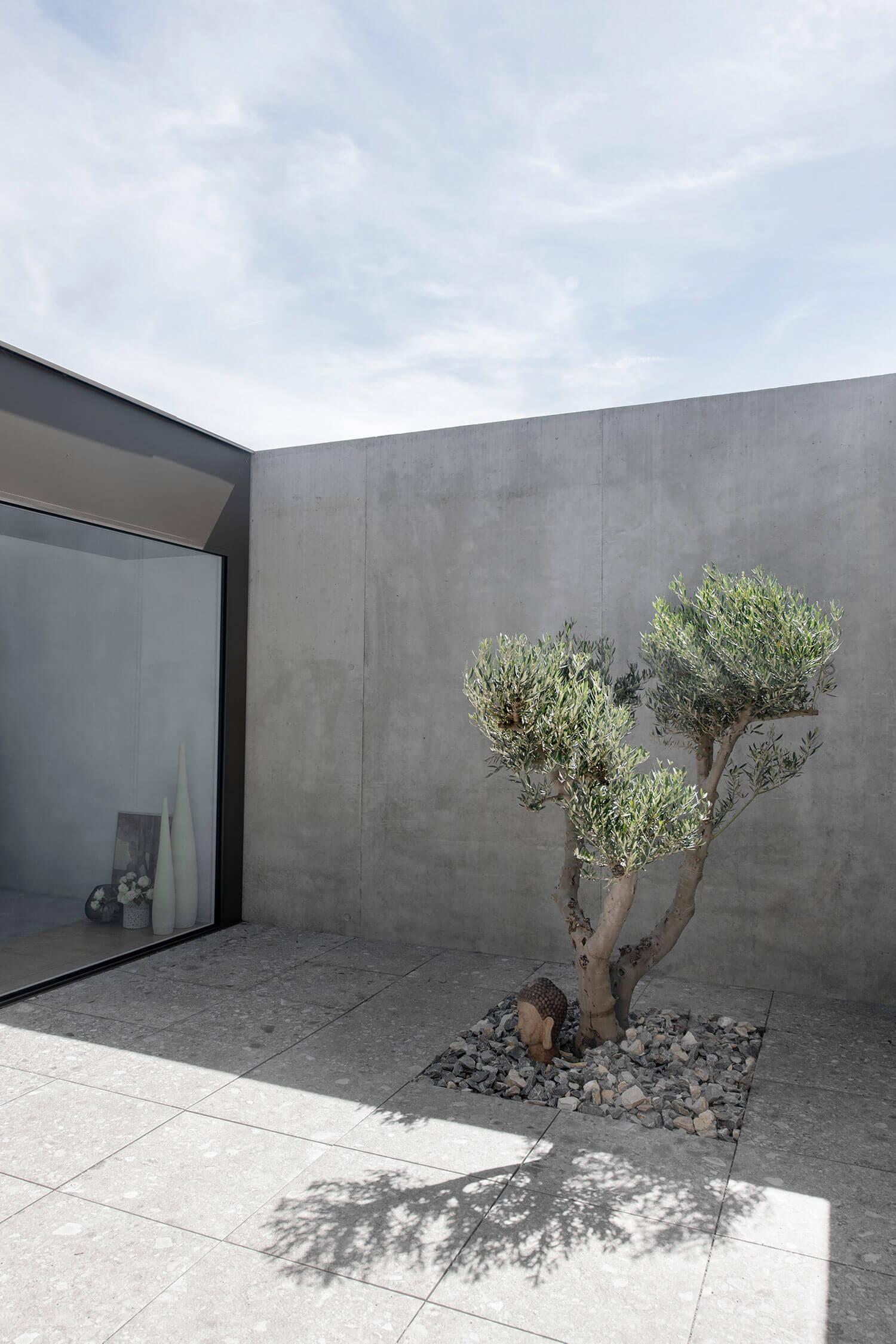 maison beton saviese 3.jpg