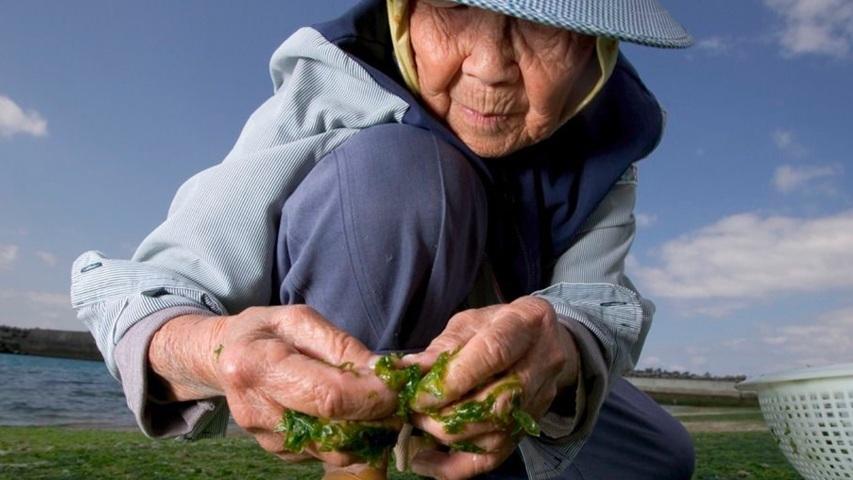 Okinawa, JapanSecrets of the world's longest-living women. - Blue Zones / Read Full Article