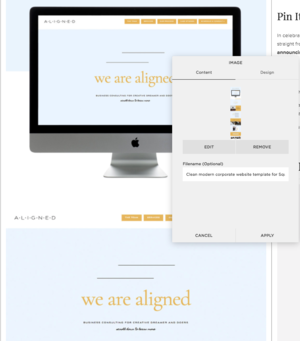 How+to+rename+your+images+on+Squarespace+_+By+Go+Live+HQ.png