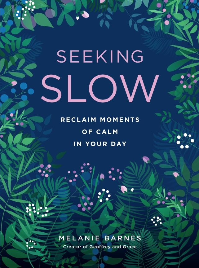 seeking slow new book