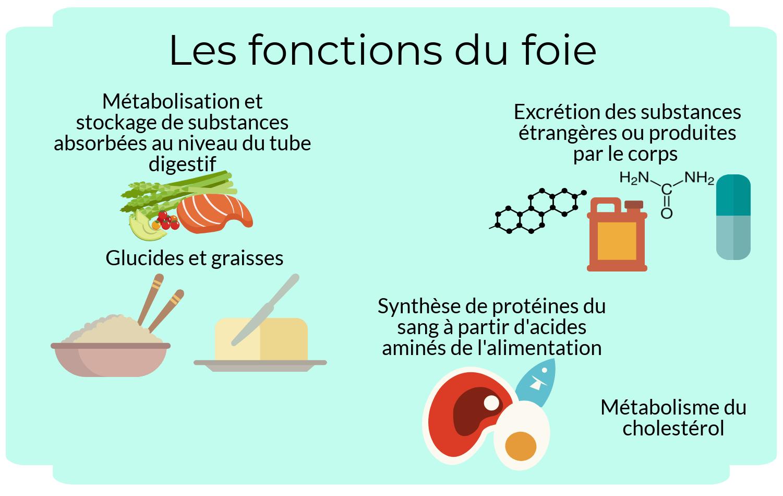 alix-le-calvez-diecc81tecc81ticienne-nutritionniste-bordeaux-2-e1550522113223.png