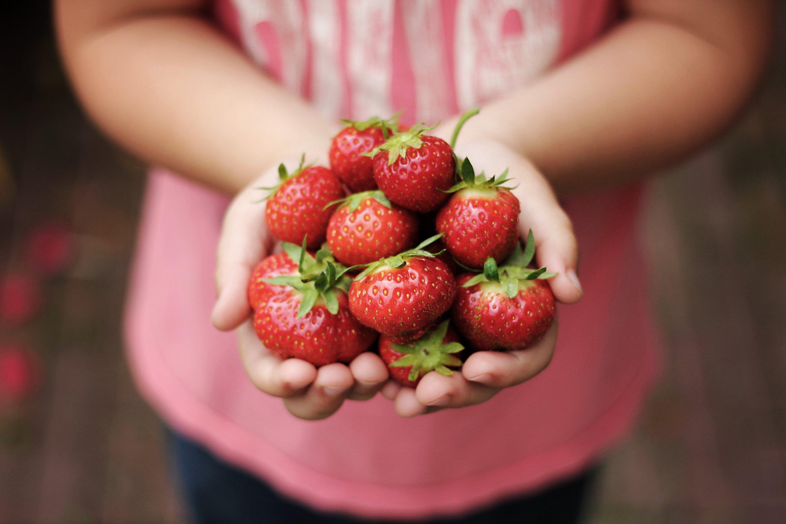Quand tu ramènes tes fraises - -Quand vous ramenez vos fraises-