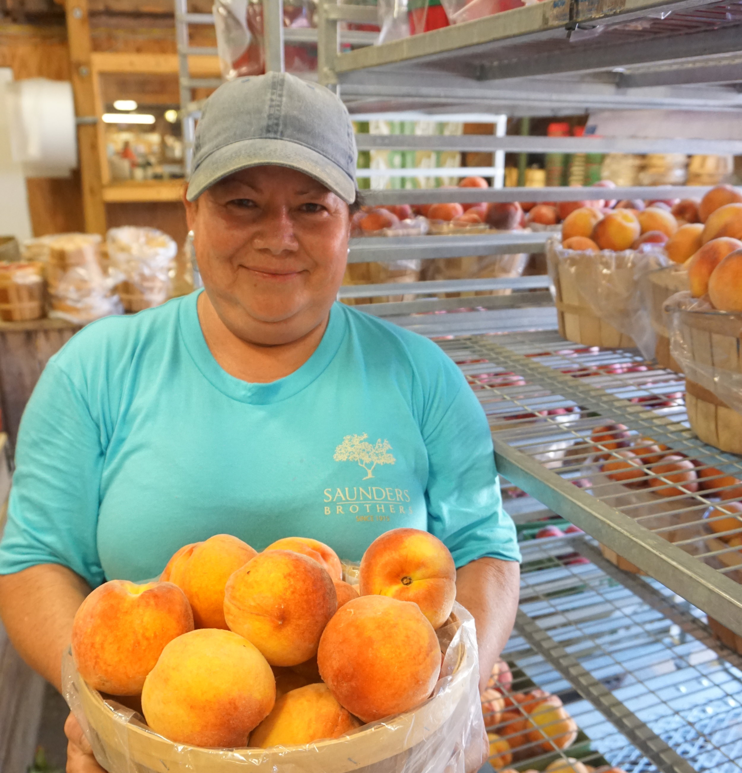 Carolina - Produce Sorter