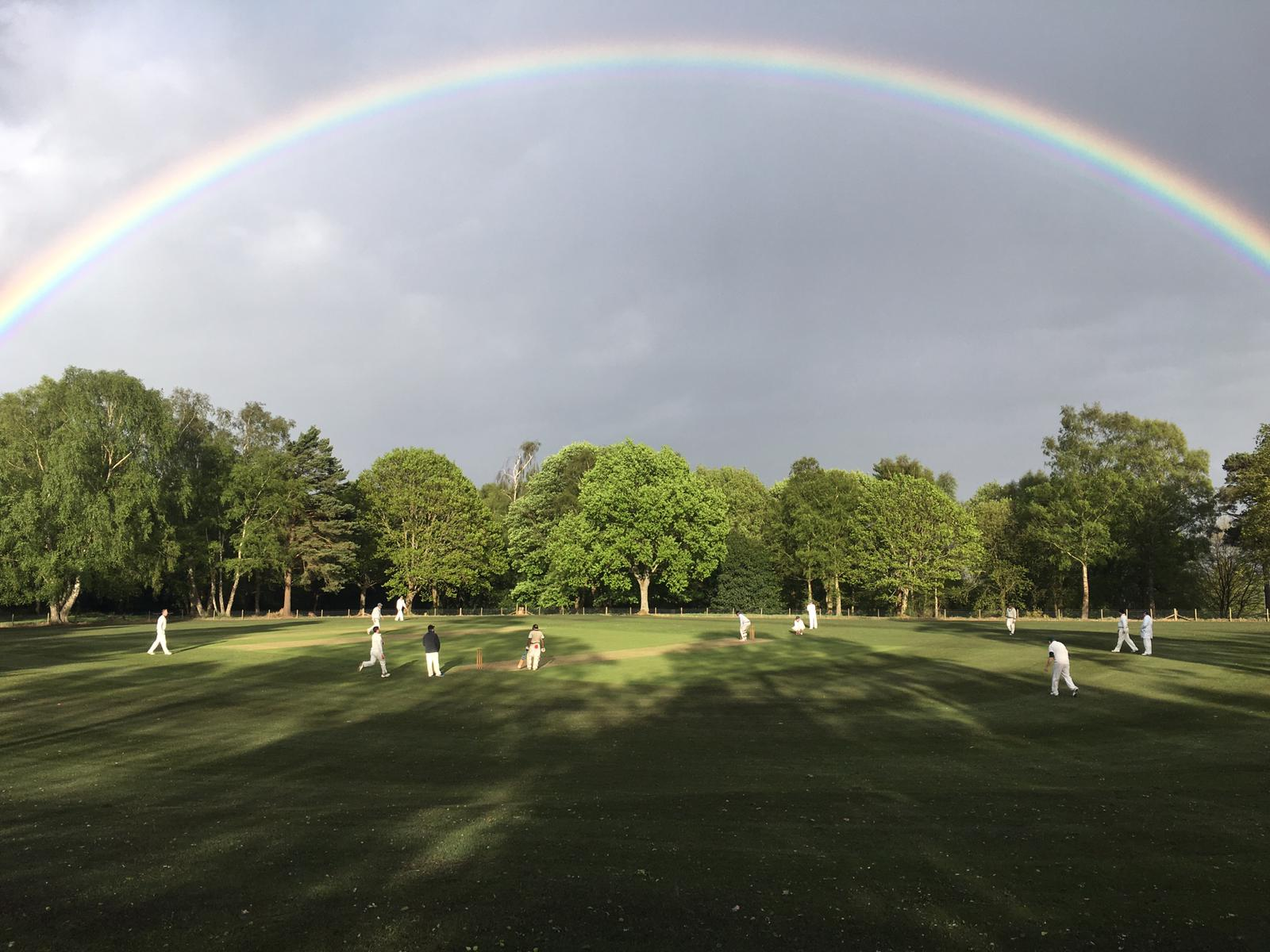 Holmbury Pride: The sun made a spectacular appearance on a gloomy day. Photo: Nigel Menzies