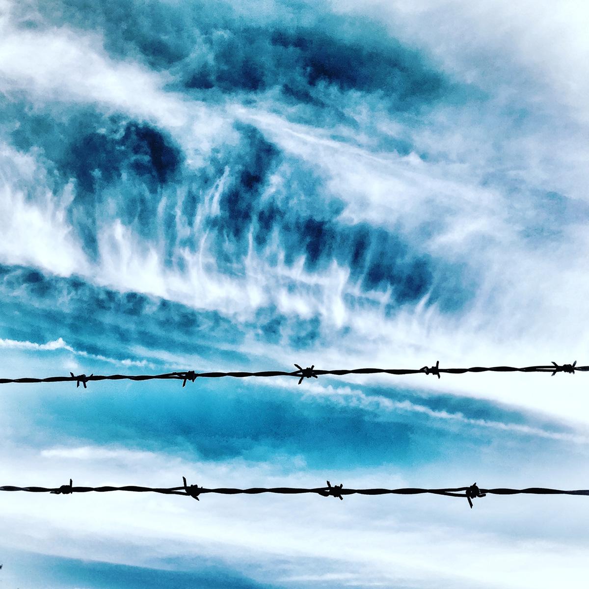 Cloudy Sky Through the Barbs 1