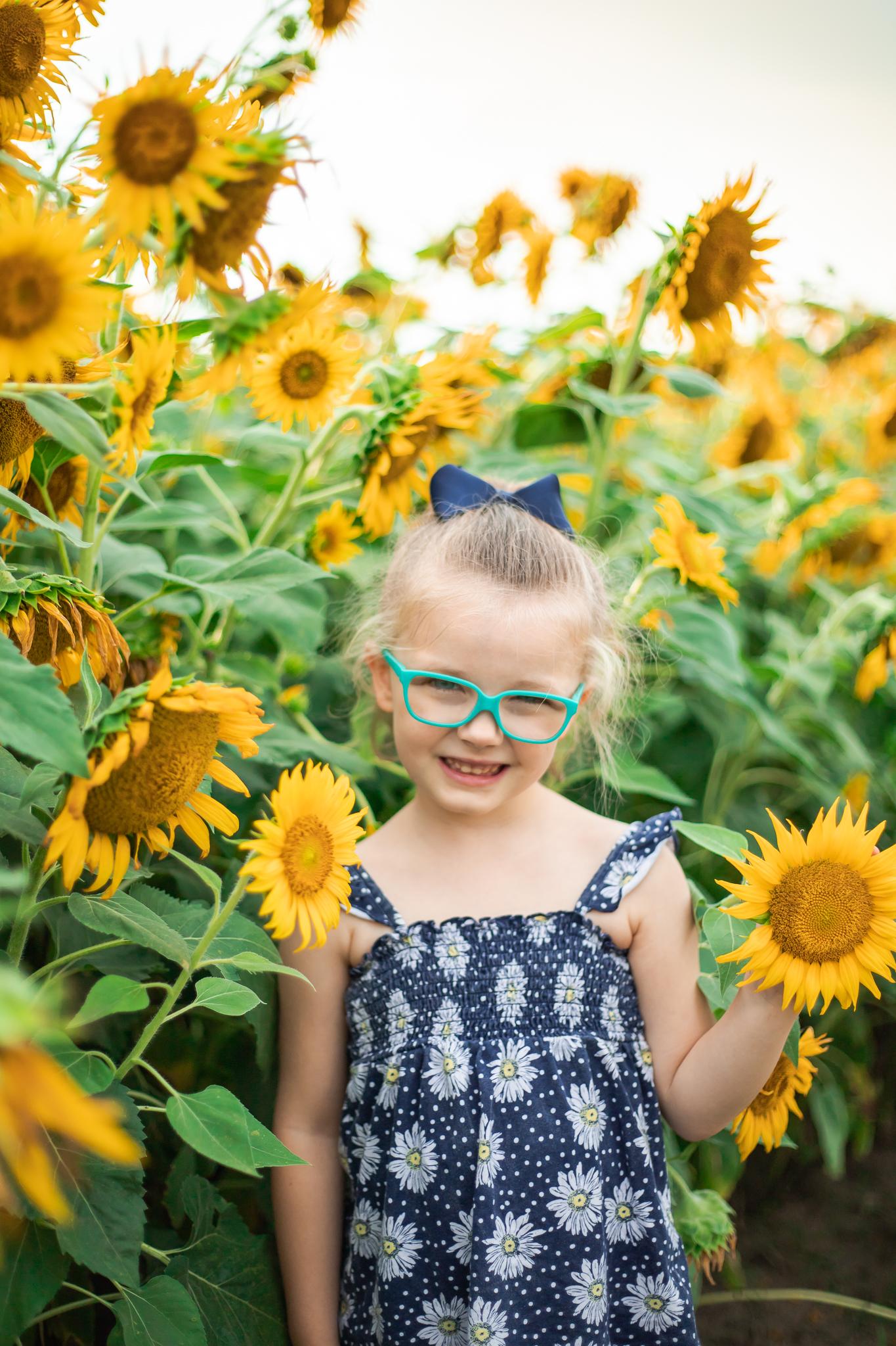 Sunflower Fields-24.jpg