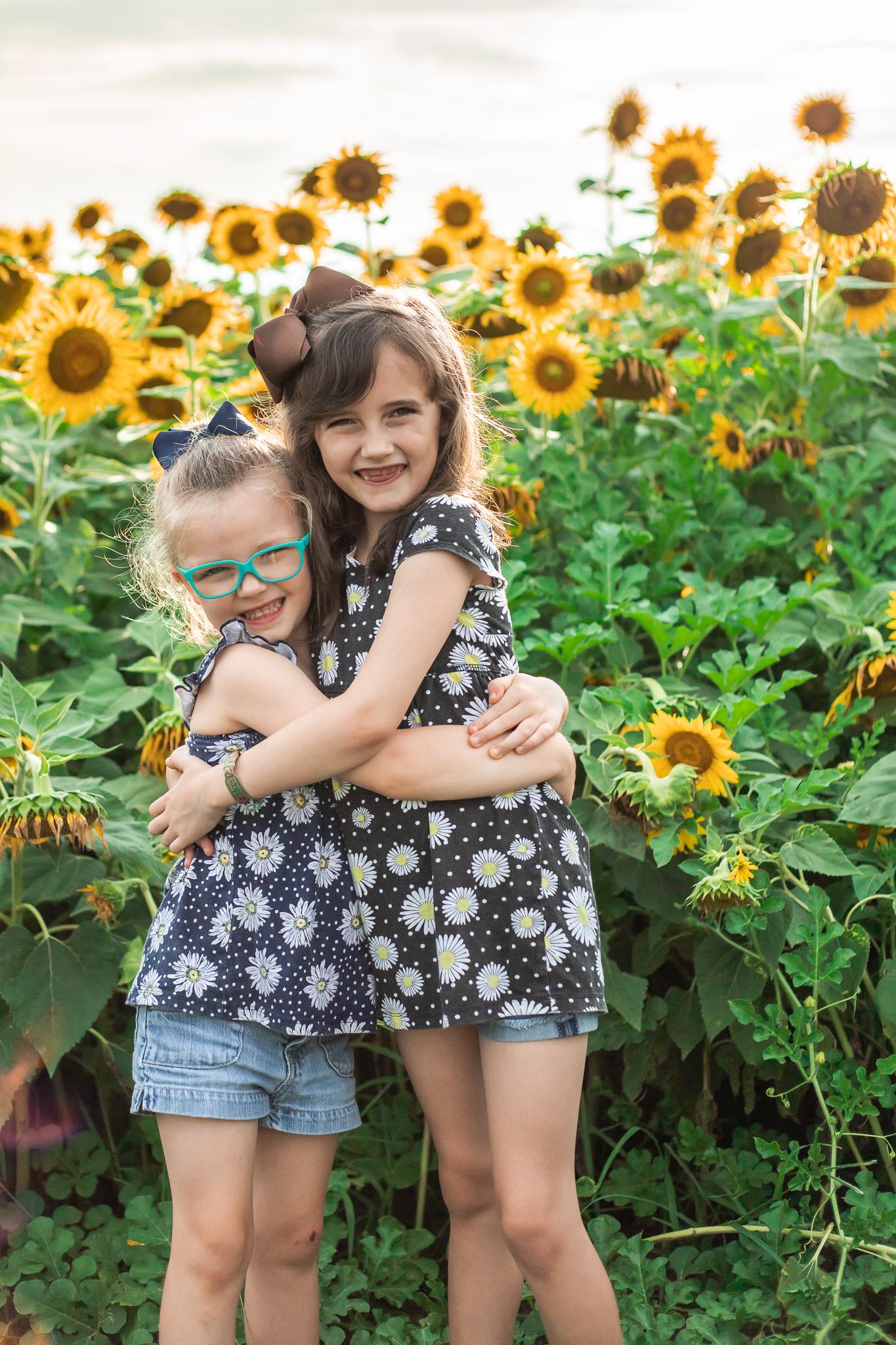 Sunflower Fields-36.jpg