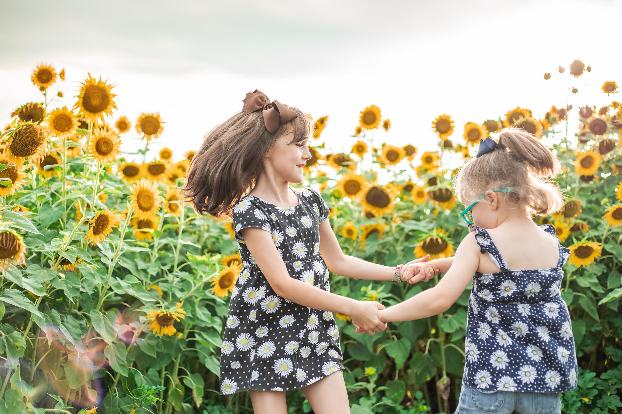 Sunflower Fields-61.jpg