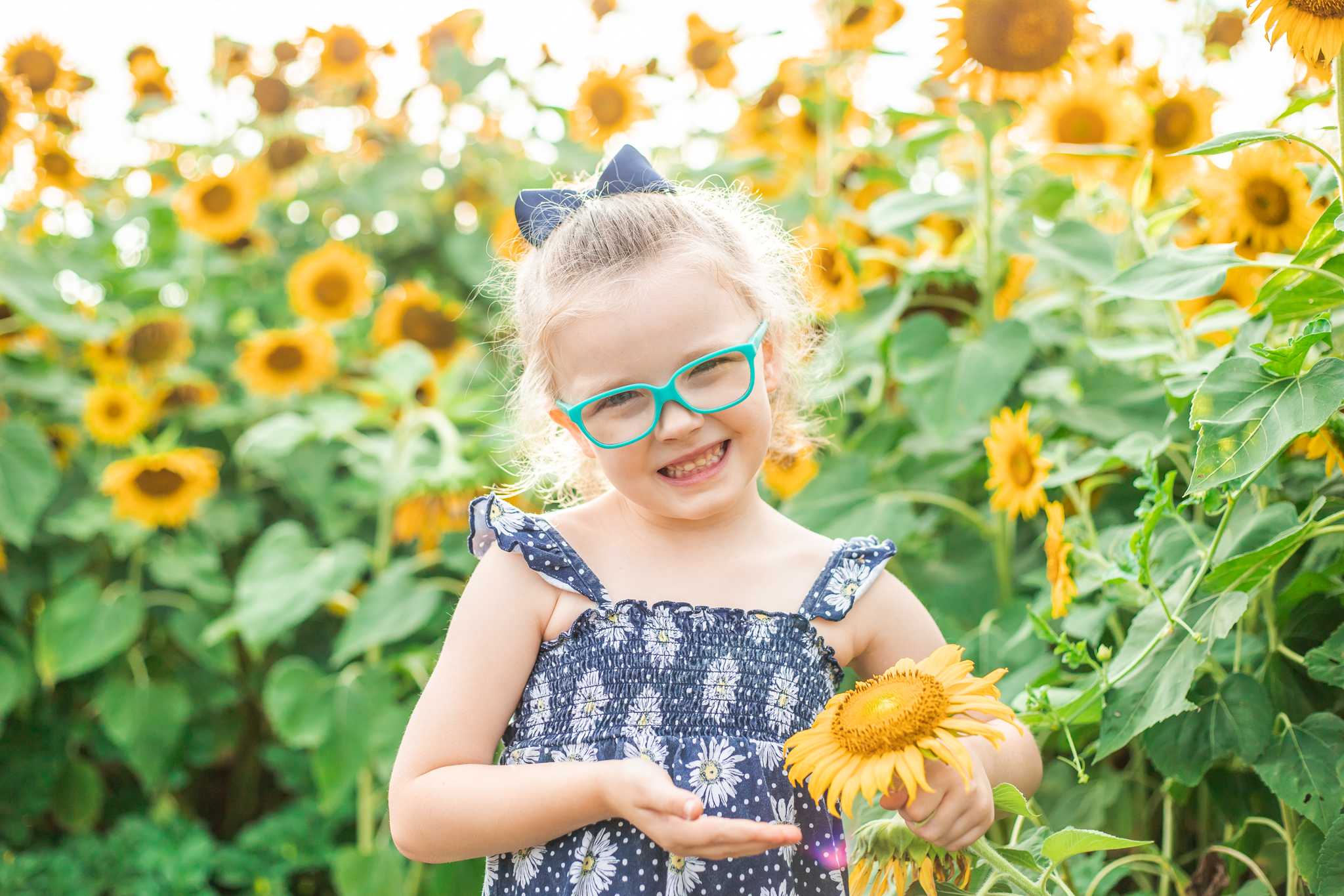 Sunflower Fields-69.jpg