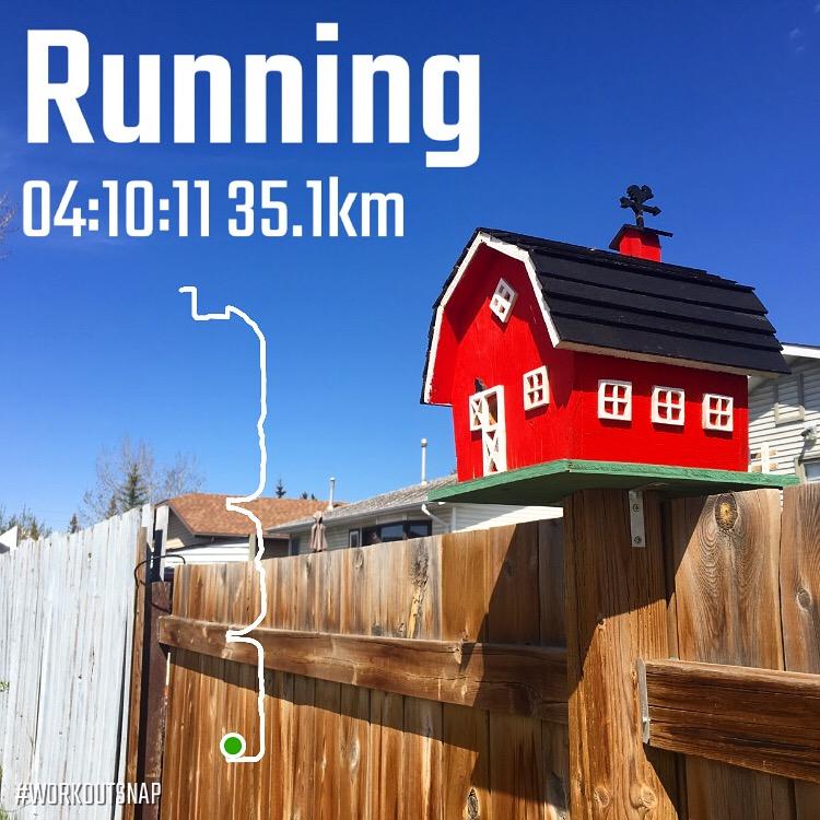 15-Marathon-Training-Week-6.JPG