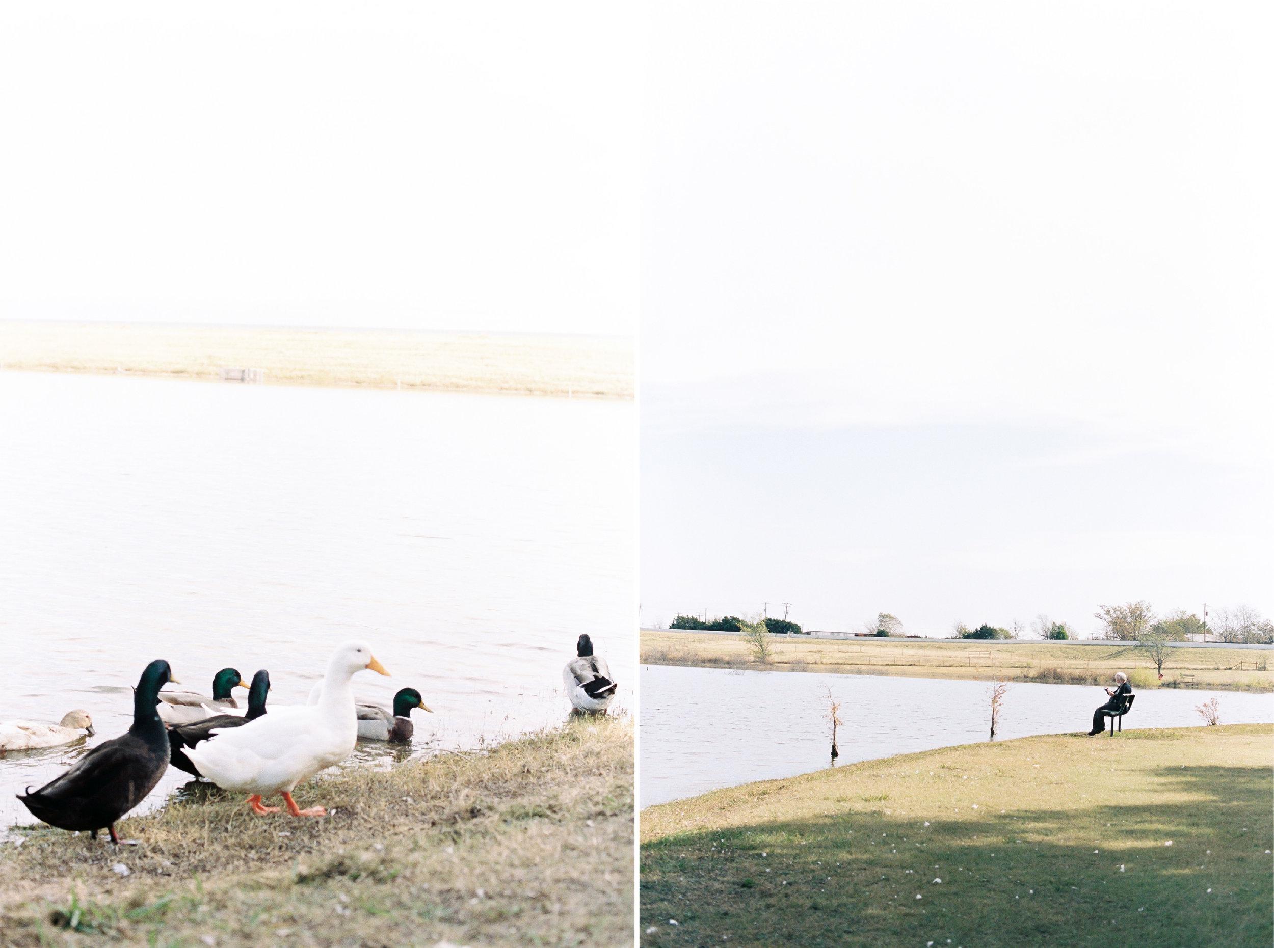 Blog Layout-07.jpg