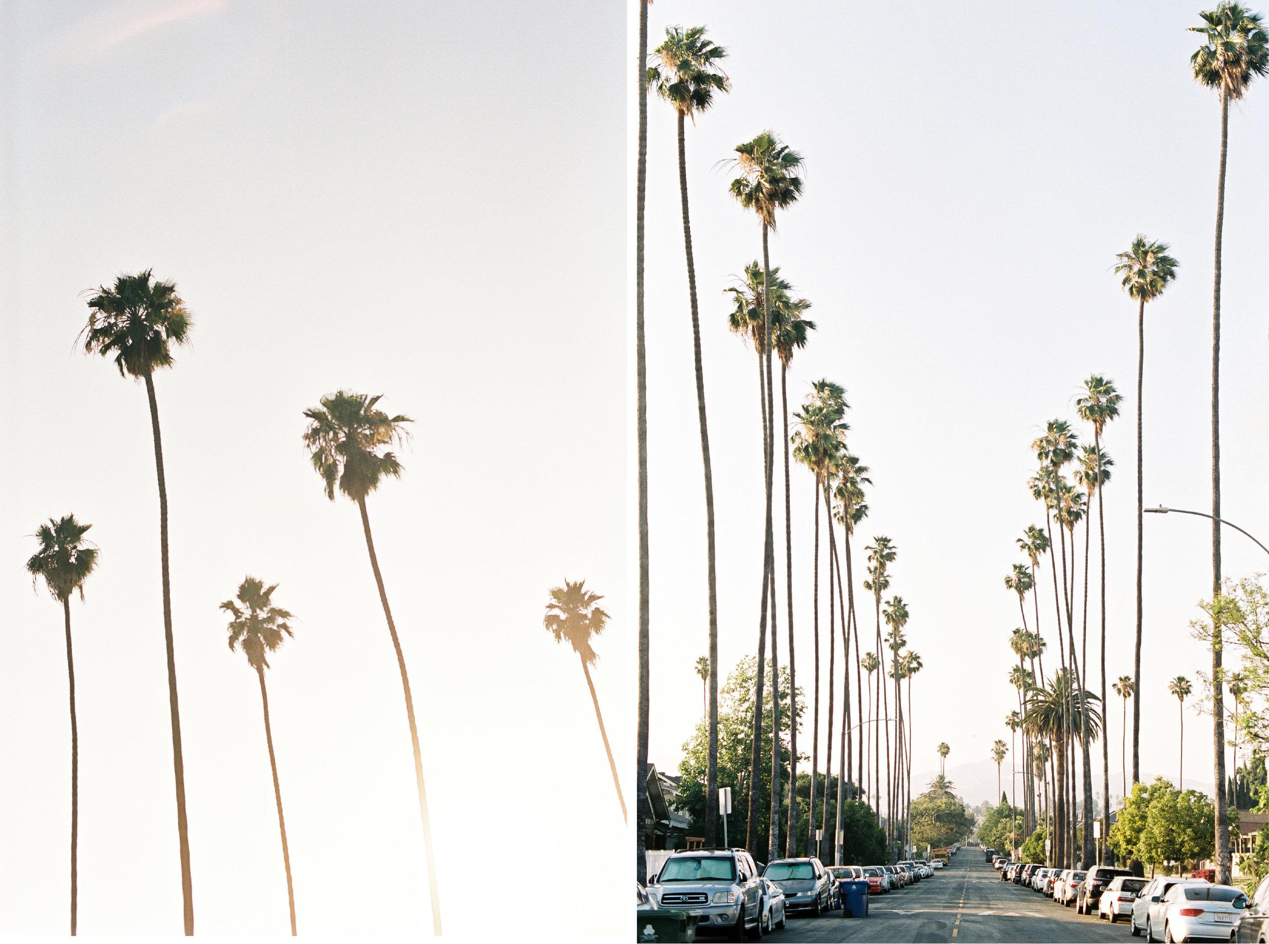 LA blog-02.jpg