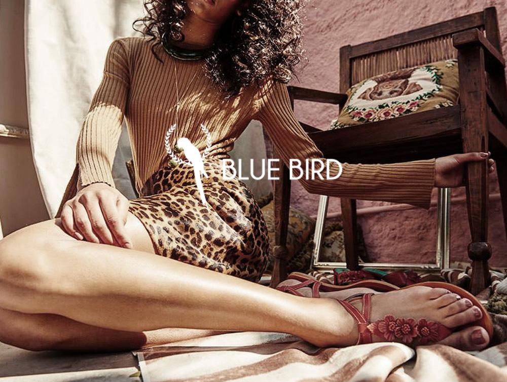 08-blue-bird.jpg