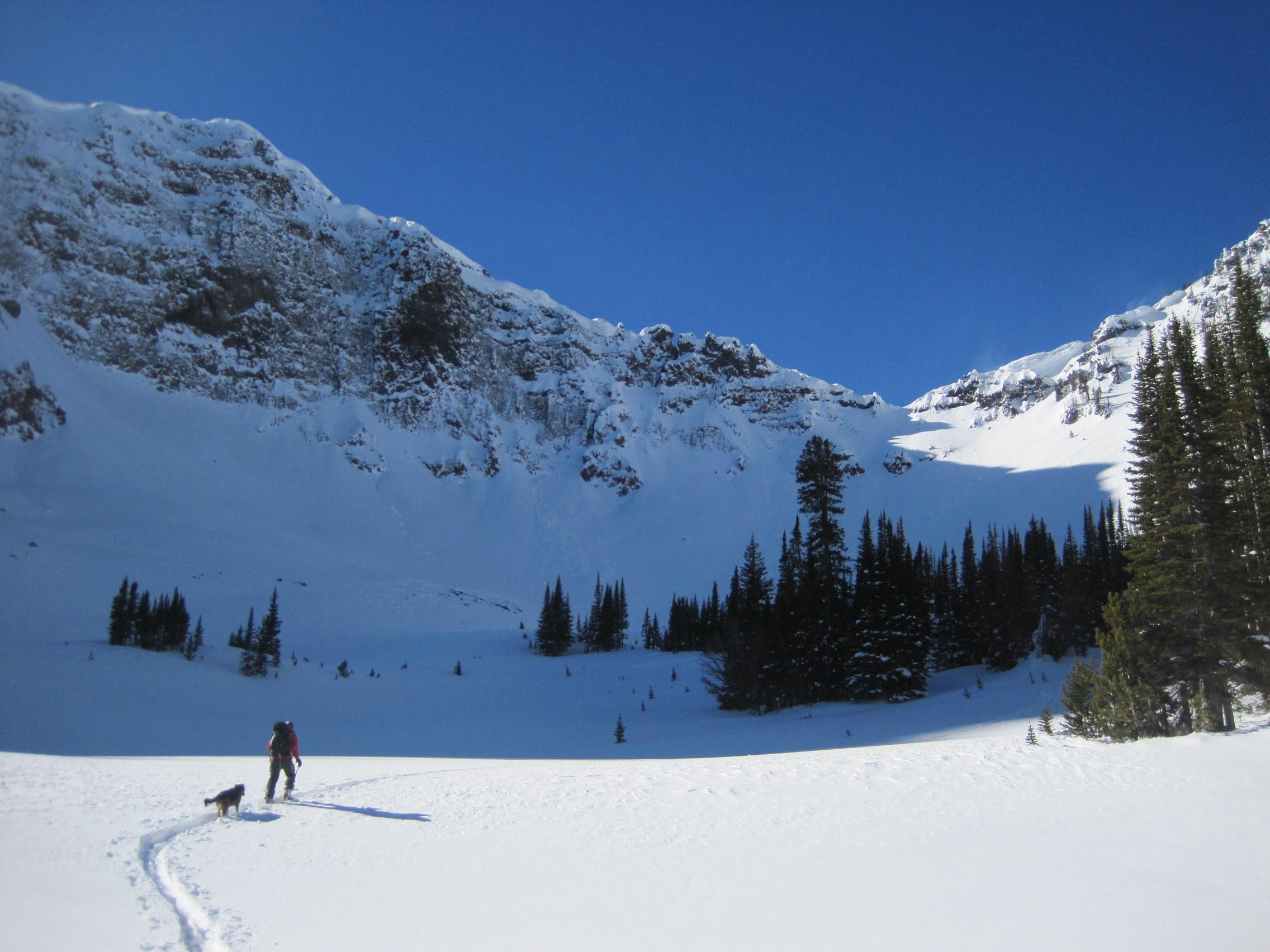 Backcountry Skiing in Hyalite.jpg