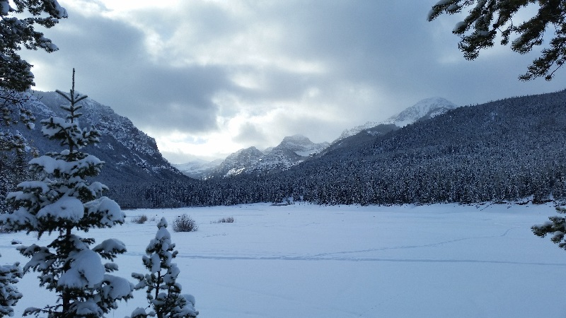 nordic skiing.jpg