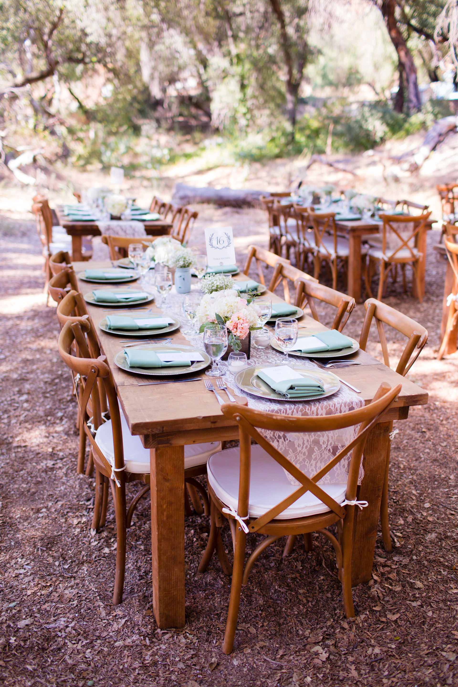hidden_oaks_retreat_wedding_mcewan_0255.jpg