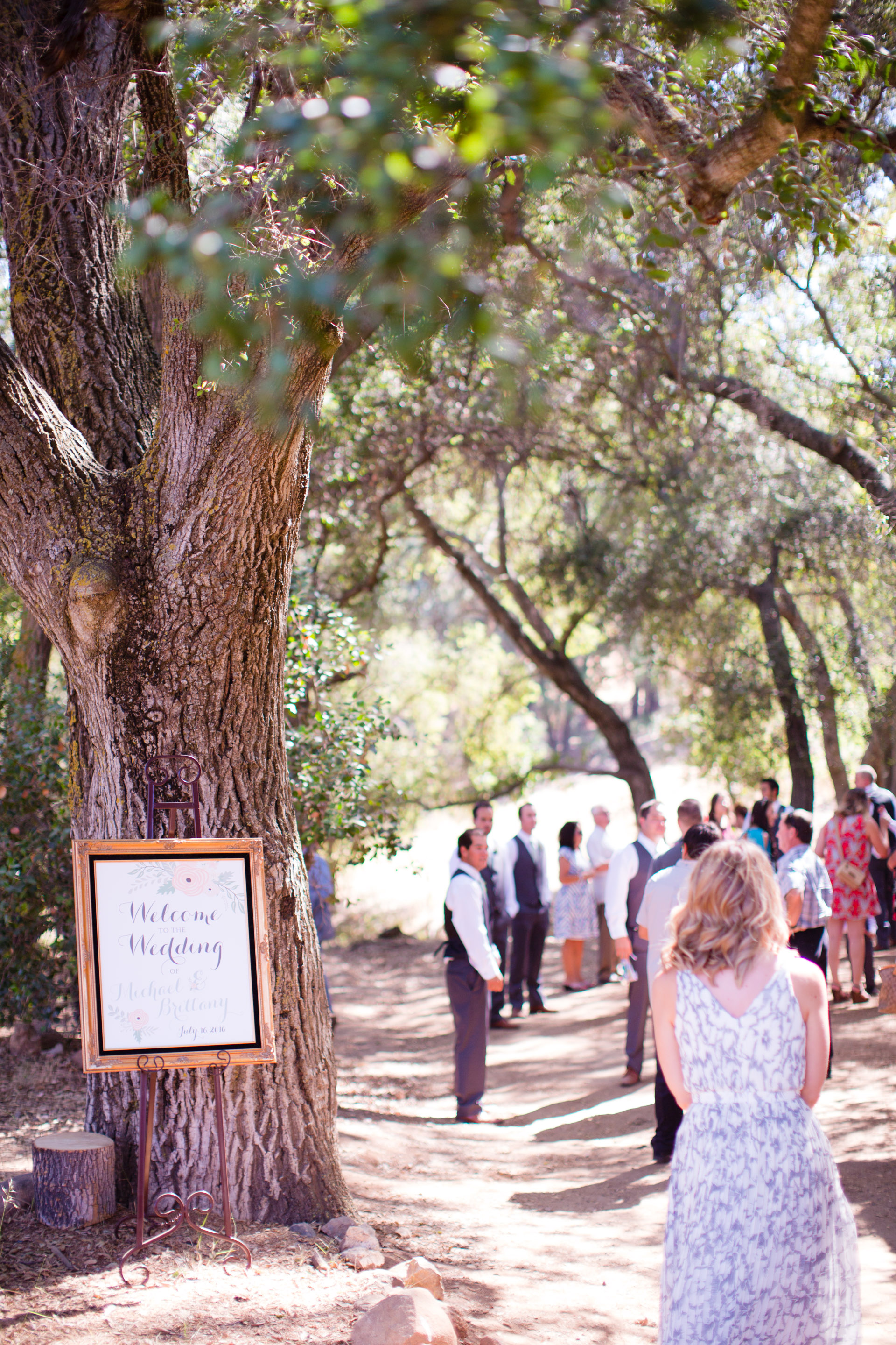 hidden_oaks_retreat_wedding_mcewan_0258.jpg