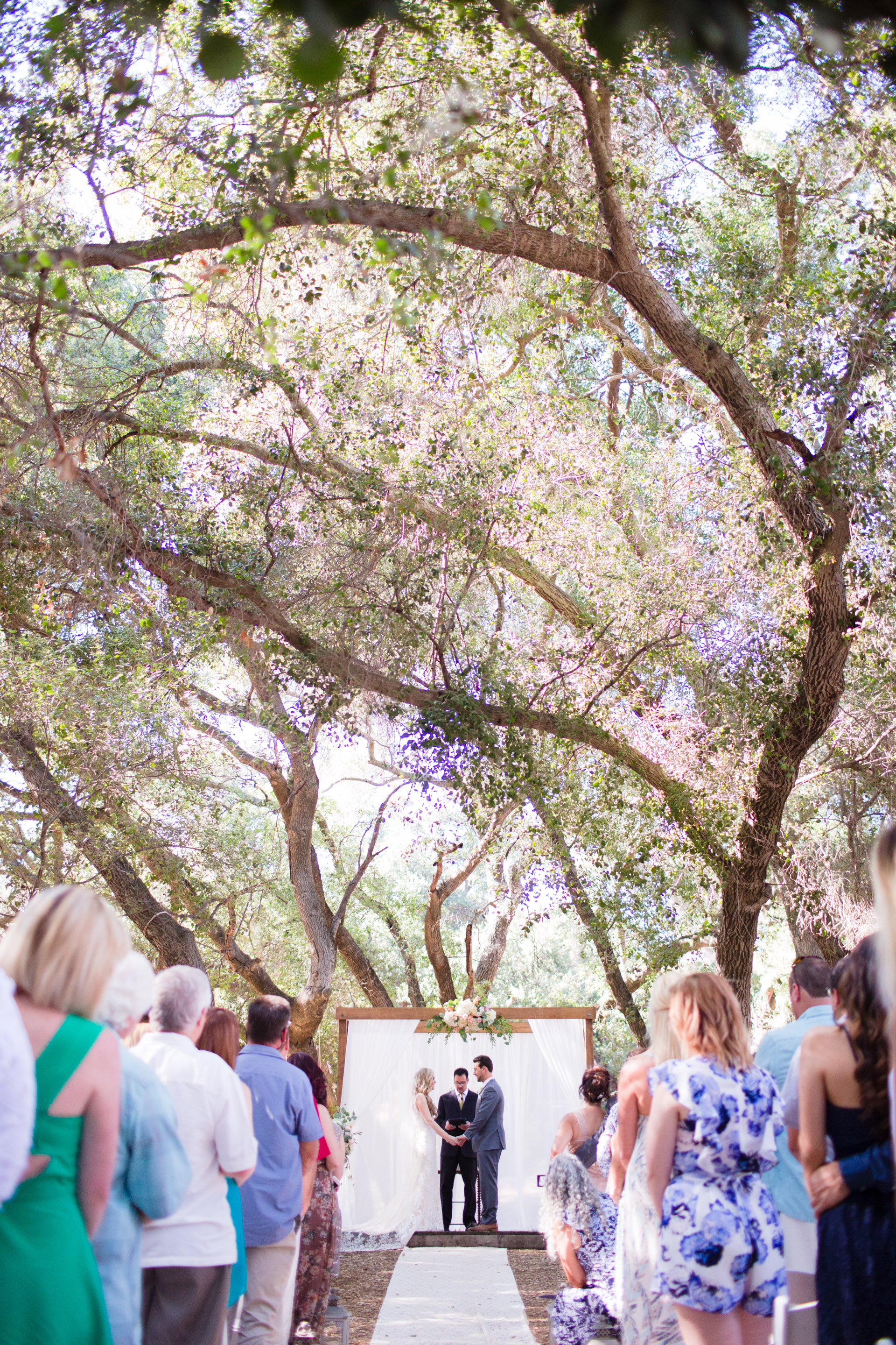 hidden_oaks_retreat_wedding_mcewan_0375.jpg
