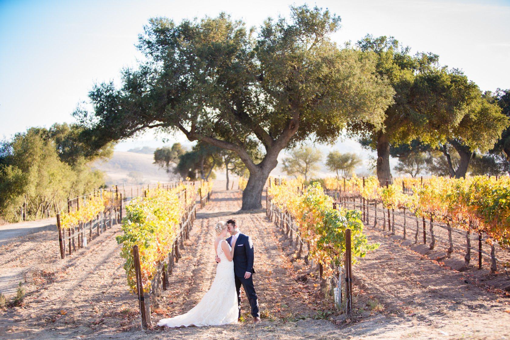 Firestone_Winery_Wedding_001.jpg