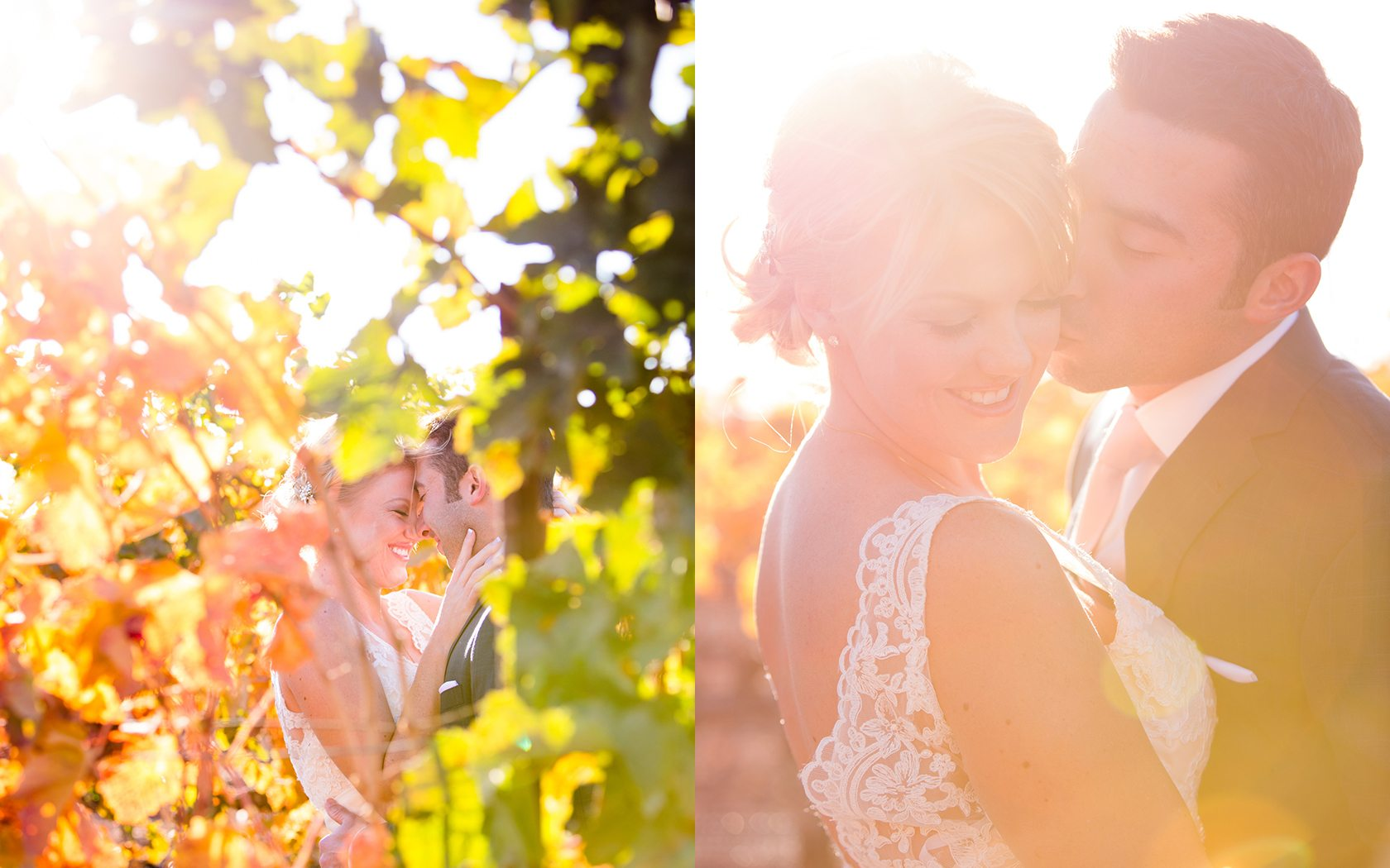 Firestone_Winery_Wedding_027.jpg