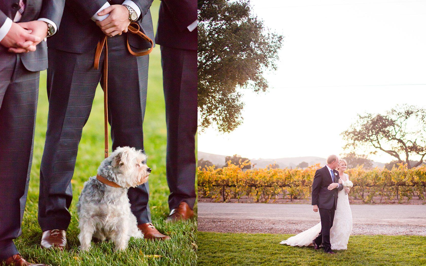 Firestone_Winery_Wedding_057.jpg