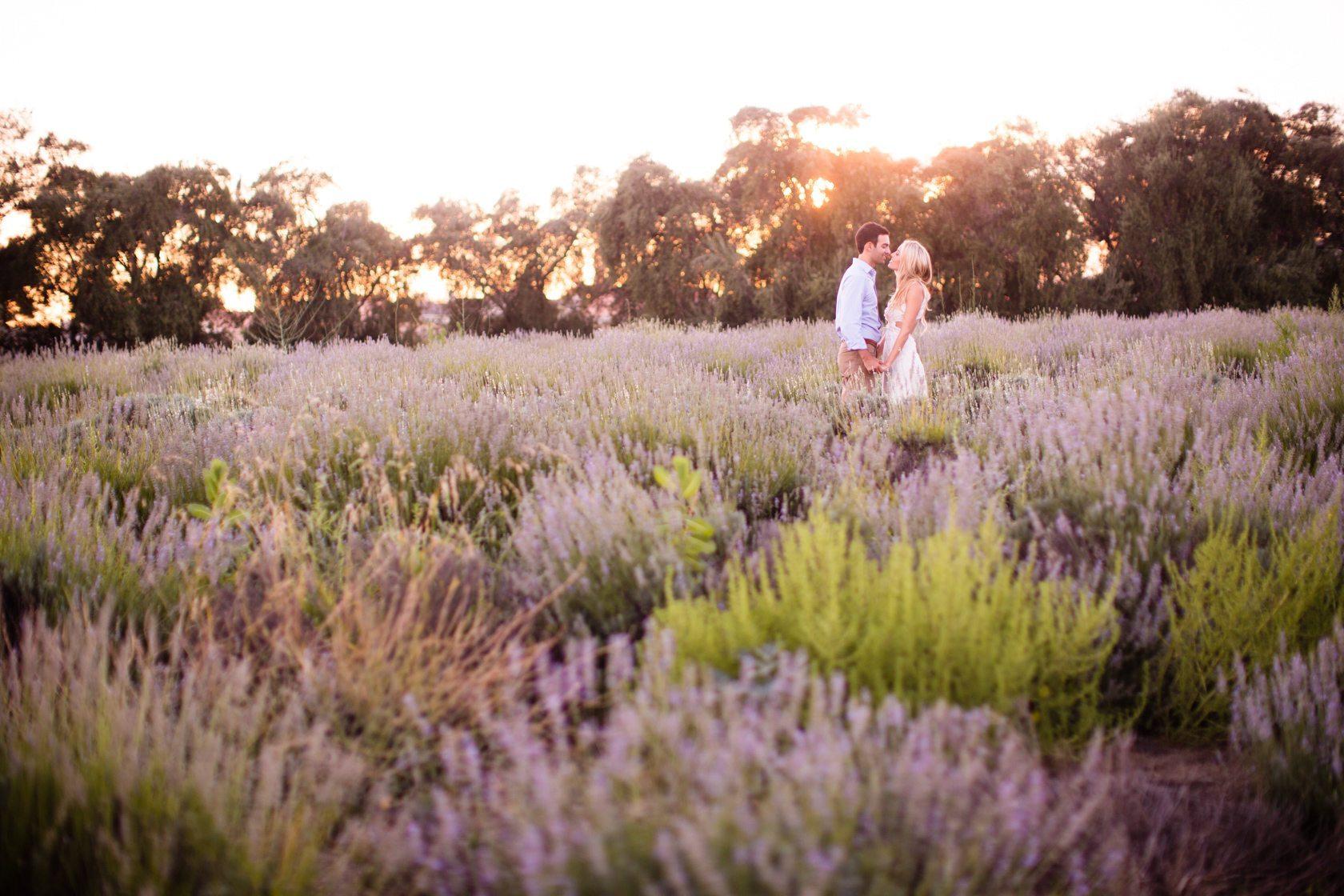 Highland_Springs_Lavender_Field_Engagement_05.jpg