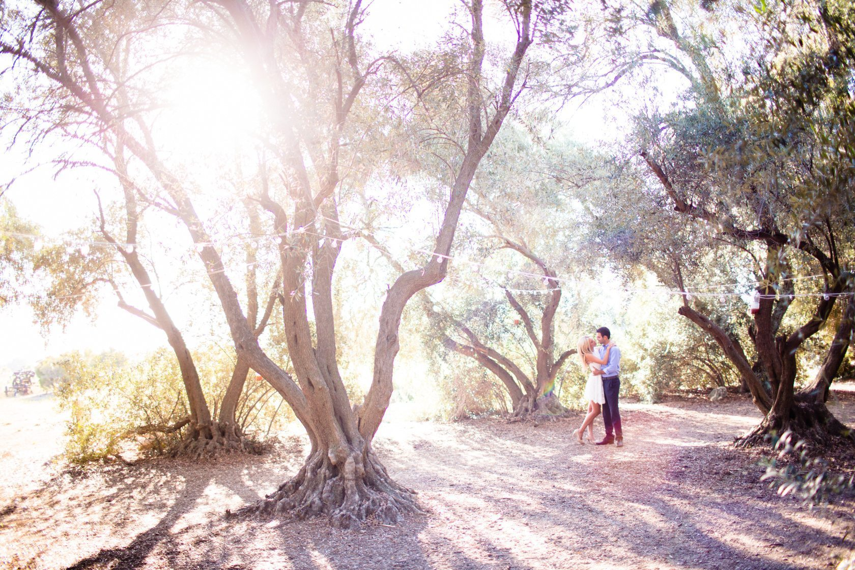 Highland_Springs_Lavender_Field_Engagement_15.jpg